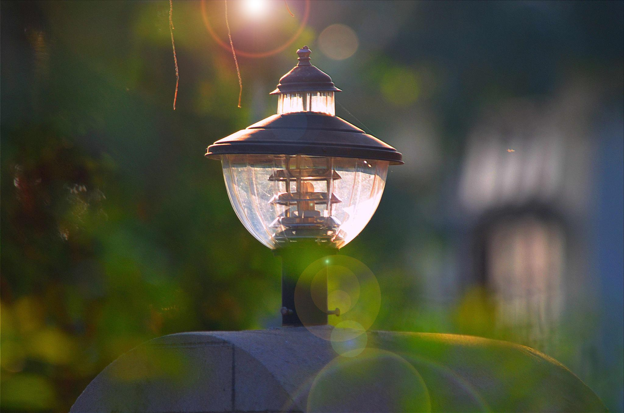 lamp by saikiasadananda
