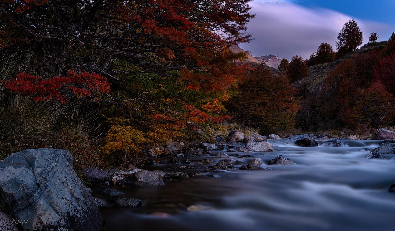 Autumn and its beautiful colors by Álvaro Méndez Vielmas