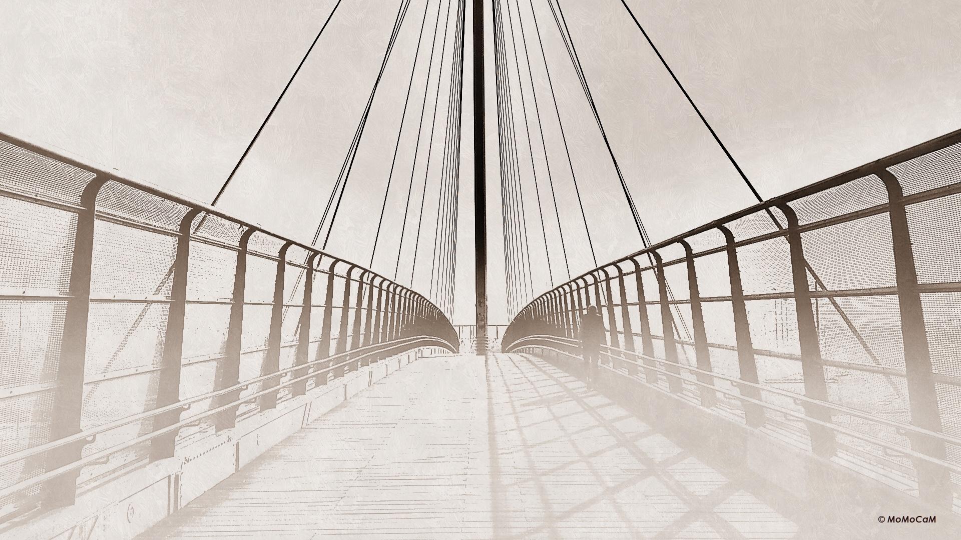 Crossing by Moheb Radwan