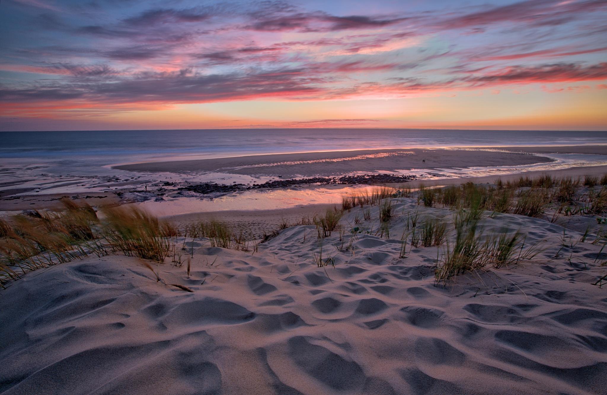 Sand Dunes by Mark Newton