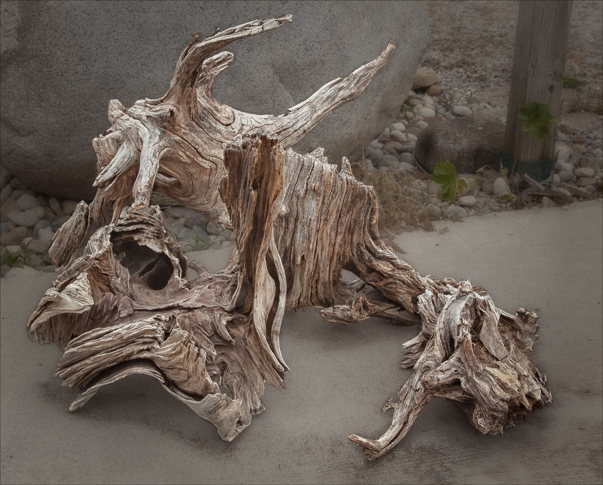 Driftwood Floor Piece by Bob Yankle