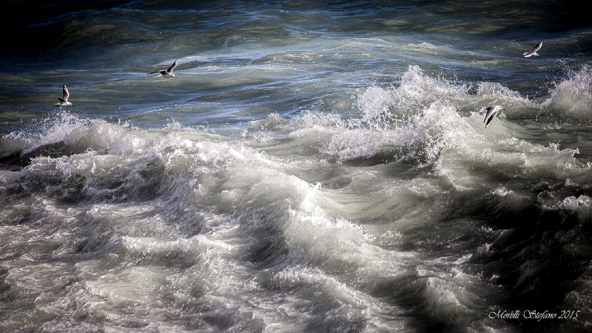 ...tra le onde... by Stefano