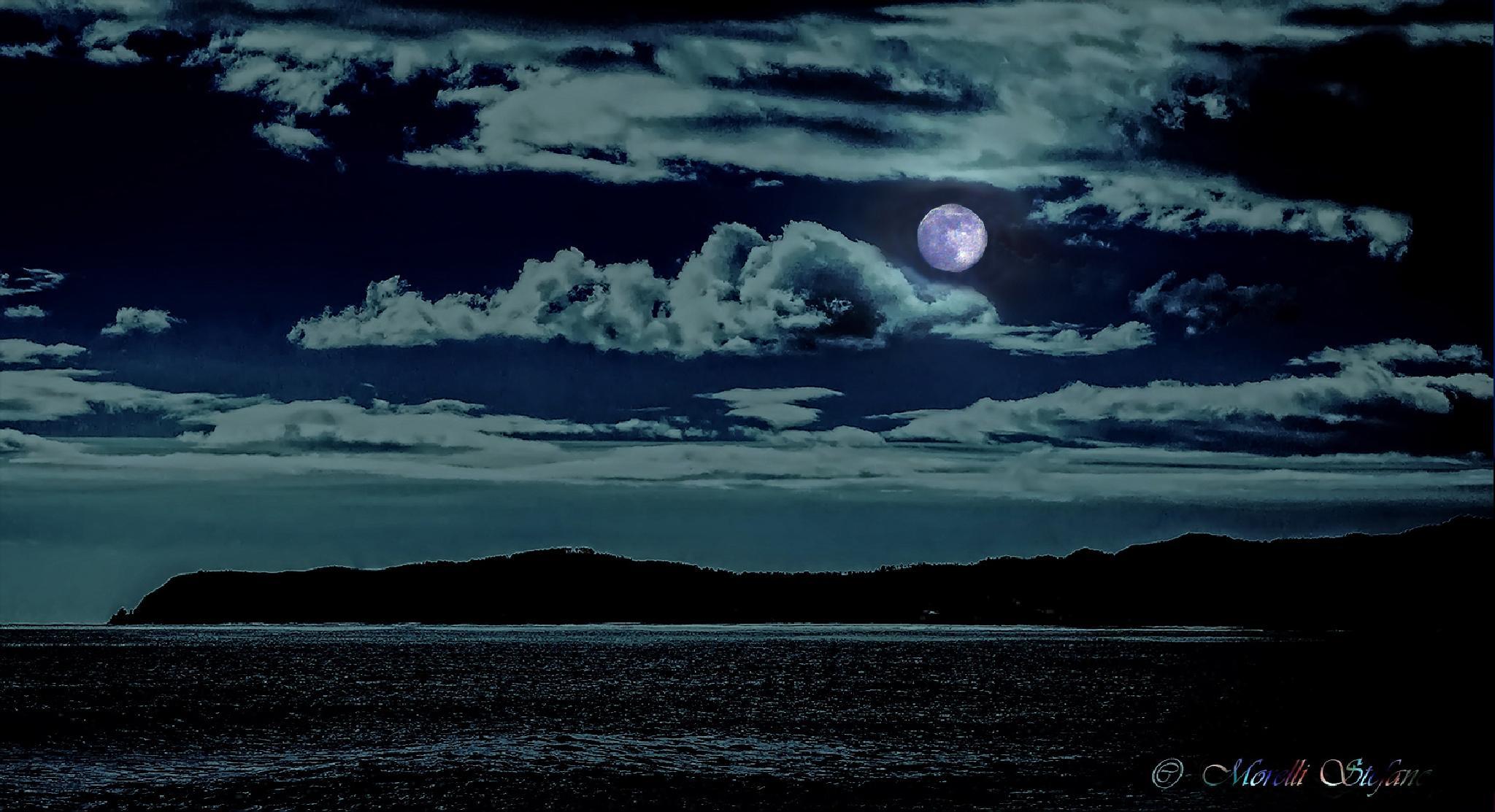 ....riflessi della notte... by Stefano