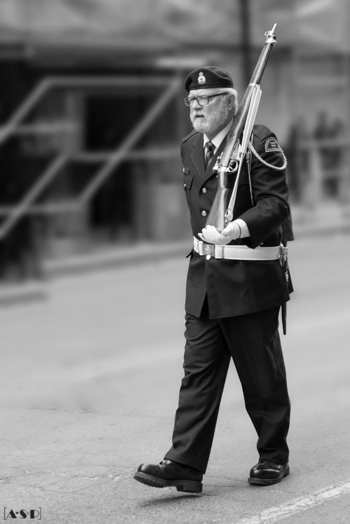"""""""Veteran"""" by Amada"""