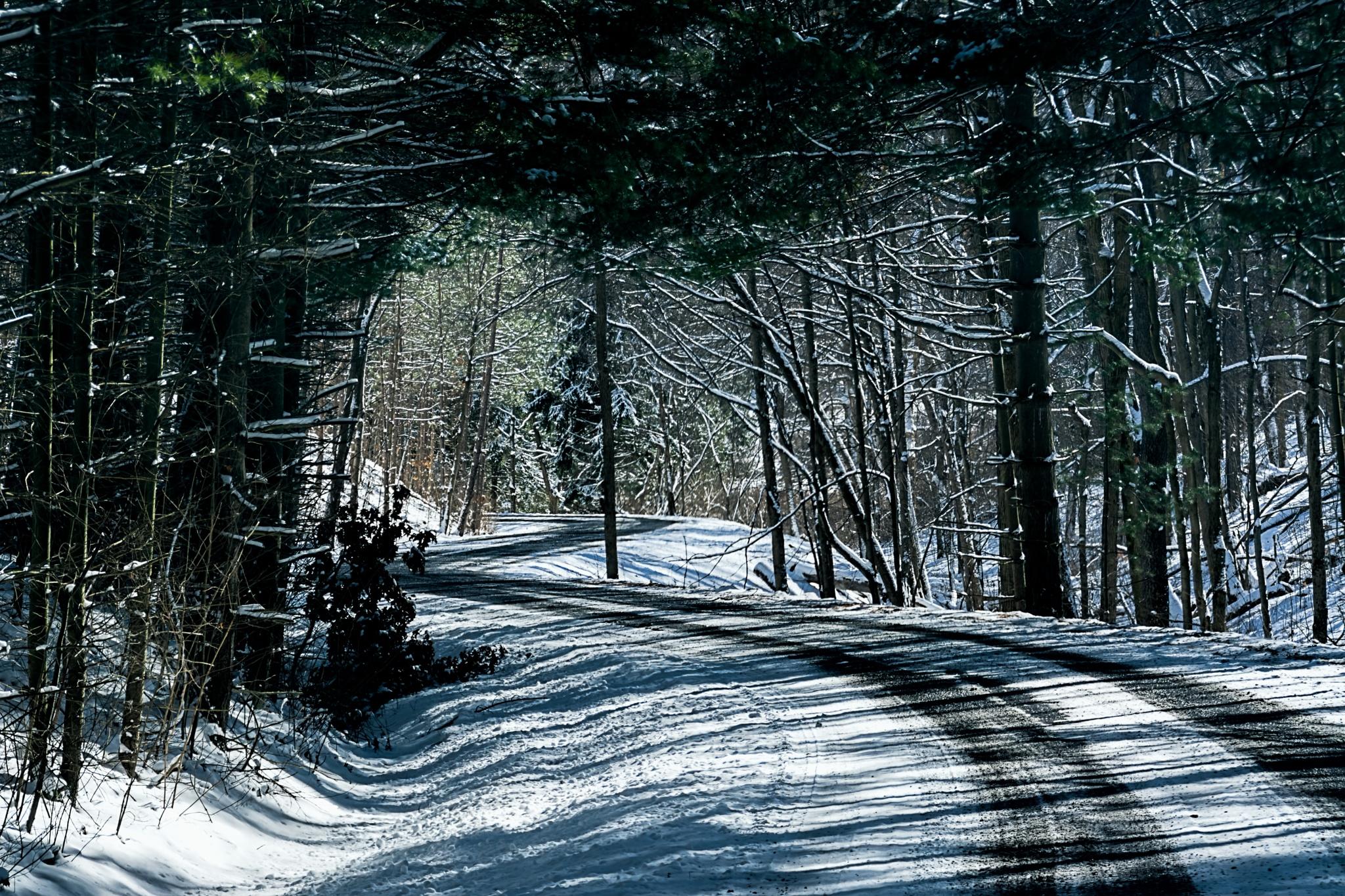 Snowy Road by 68steelphotos