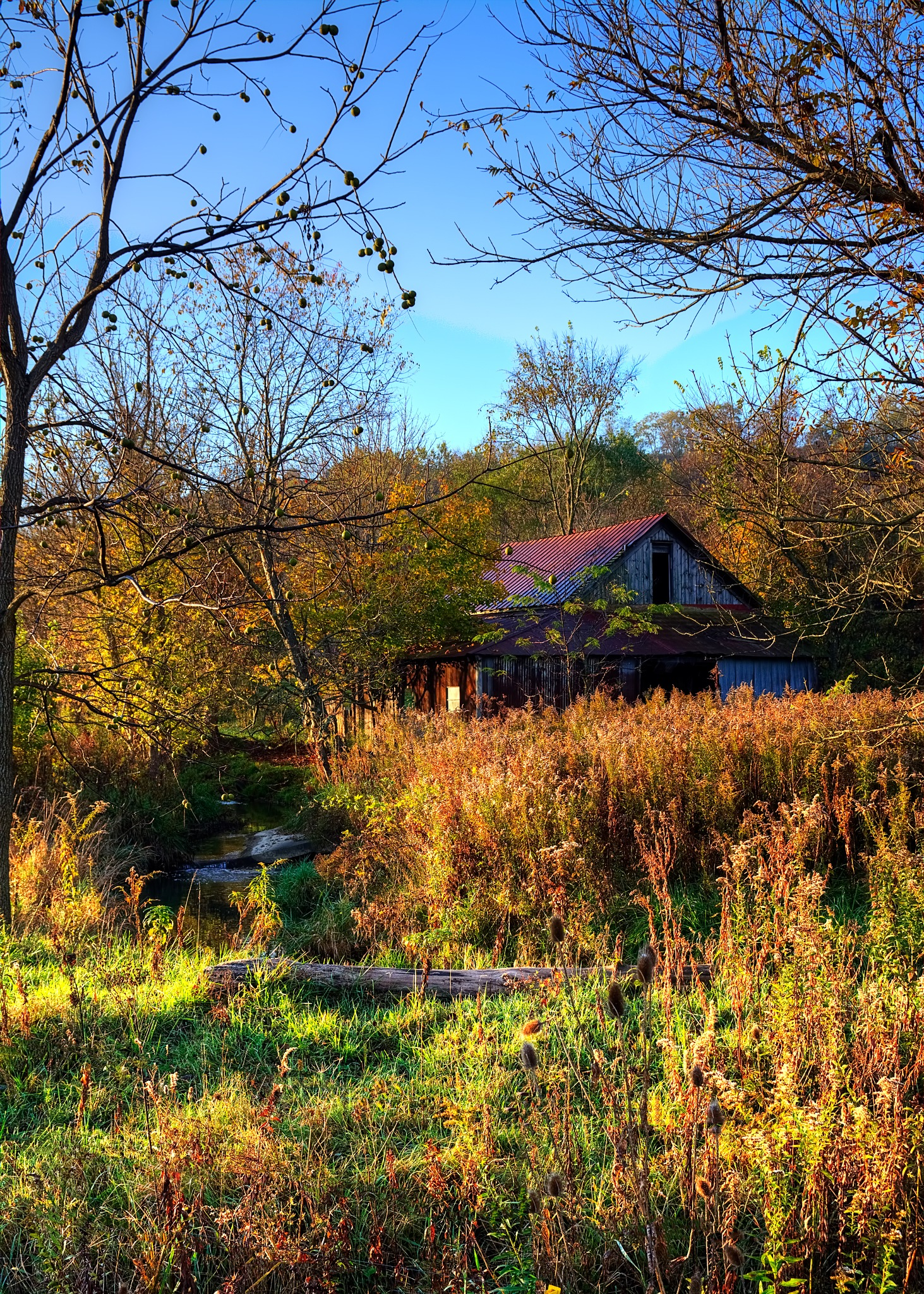 Fall Morning in Ohio by 68steelphotos