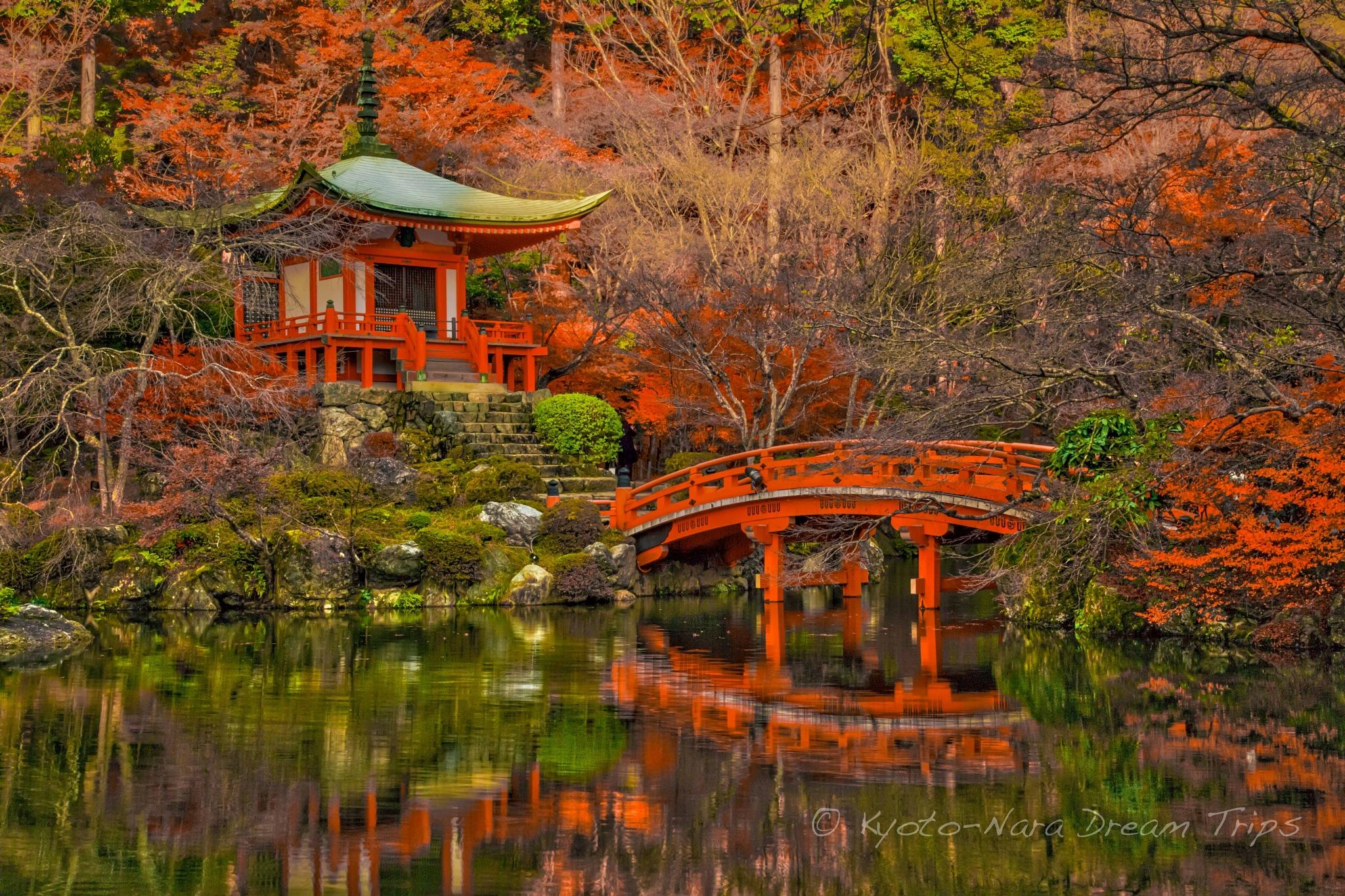 Autumn Buzz at Daigo-ji in Kyoto City! by KyotoNaraDreamTrips