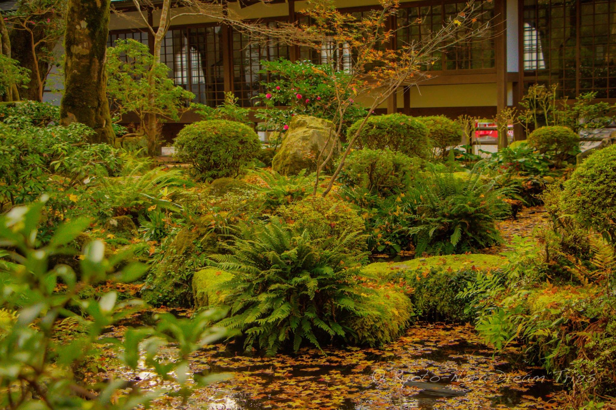 Discovering Rural Ōhara in Kyoto: Sanzen-in. by KyotoNaraDreamTrips