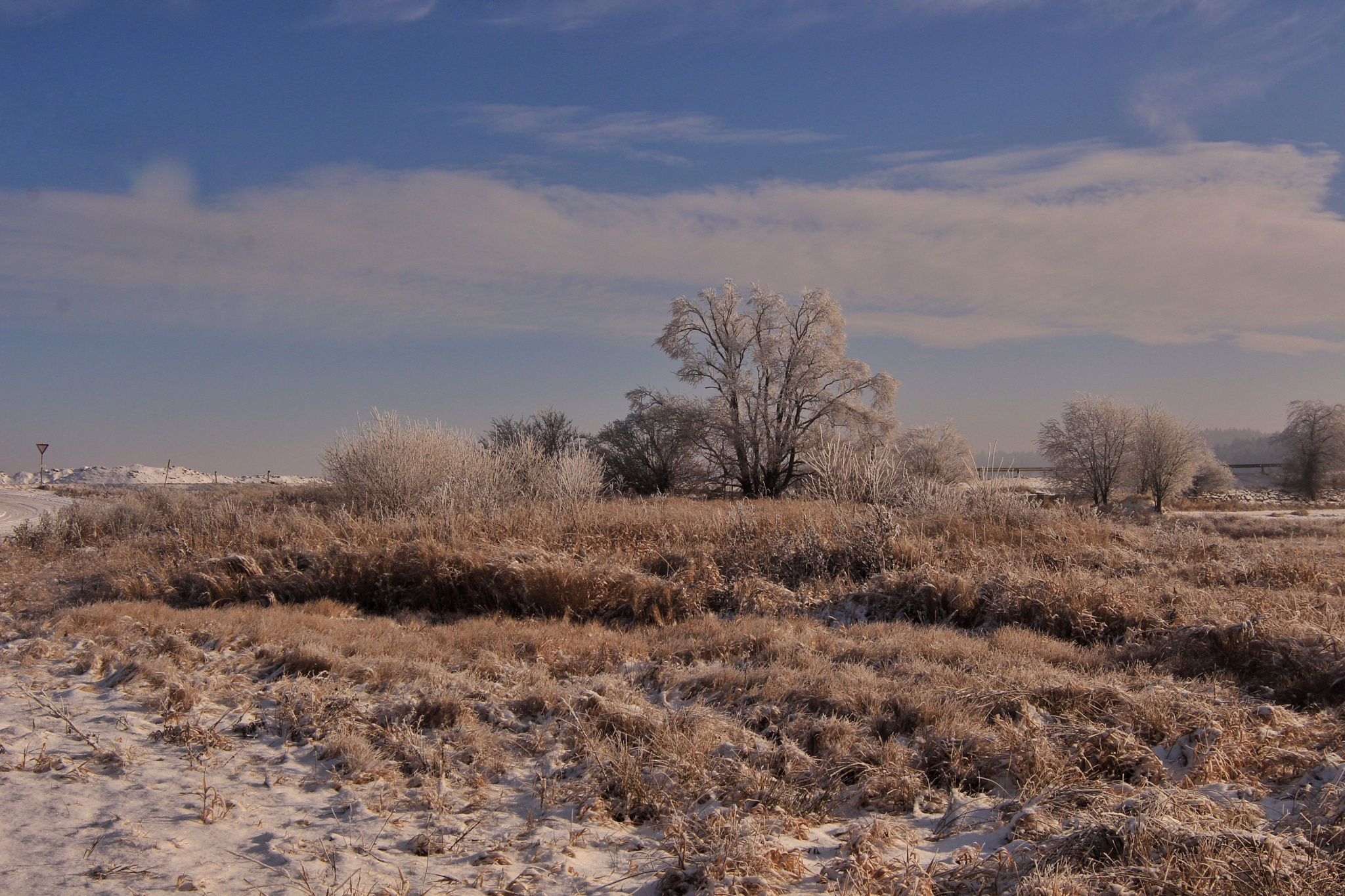 Winter Dream  by Franzl