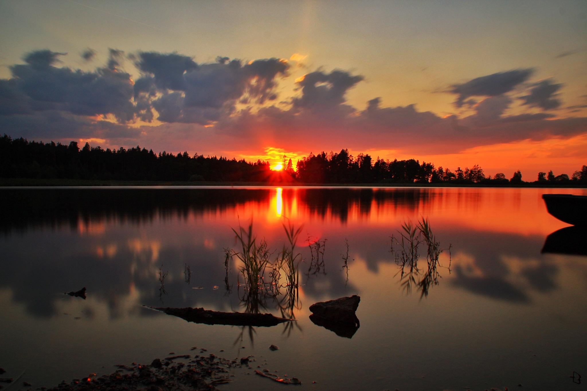Letzten Abend am Schönauerteich  Teich by Franzl