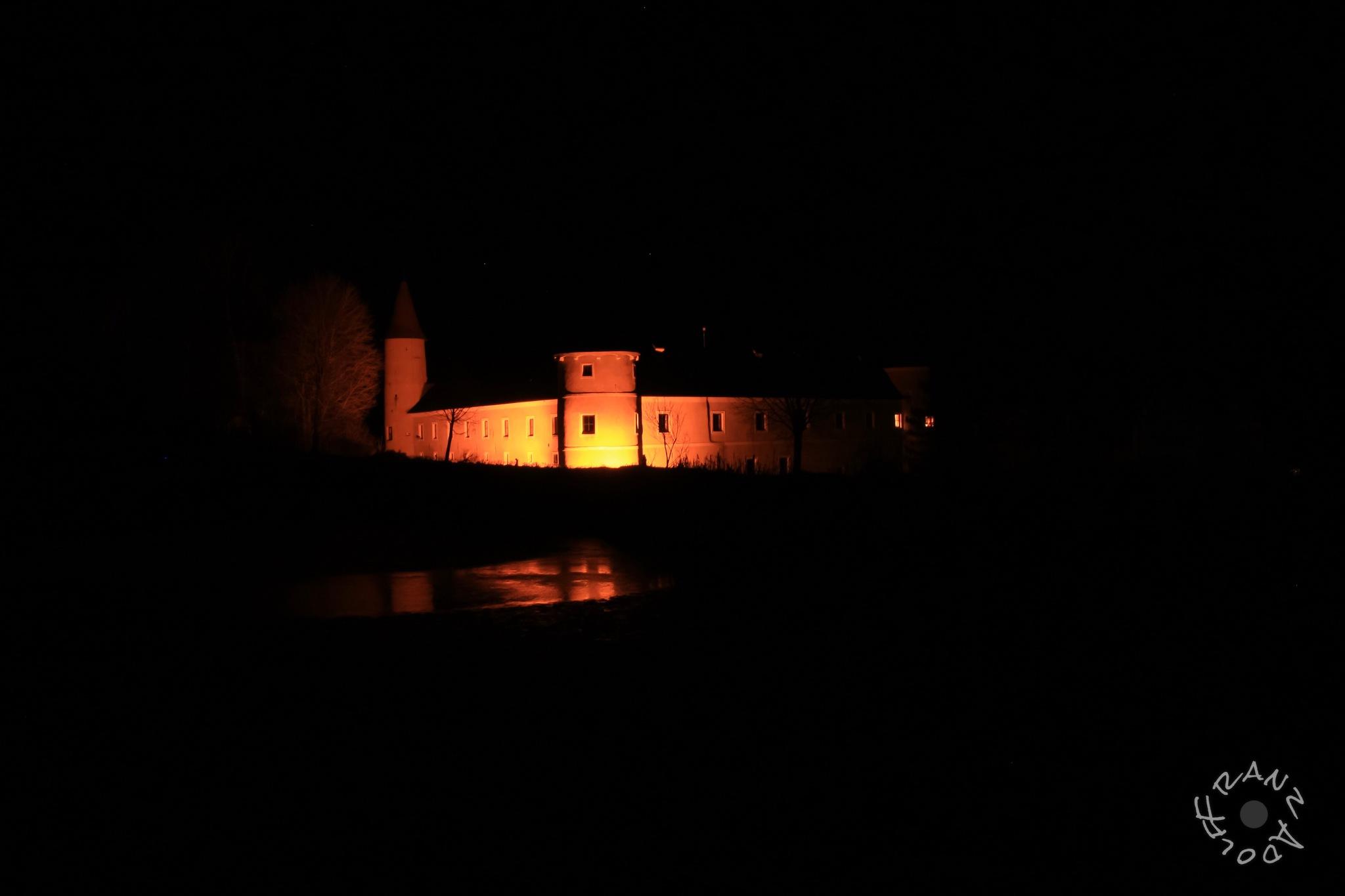 Castle of Waldreichs  1 by Franzl