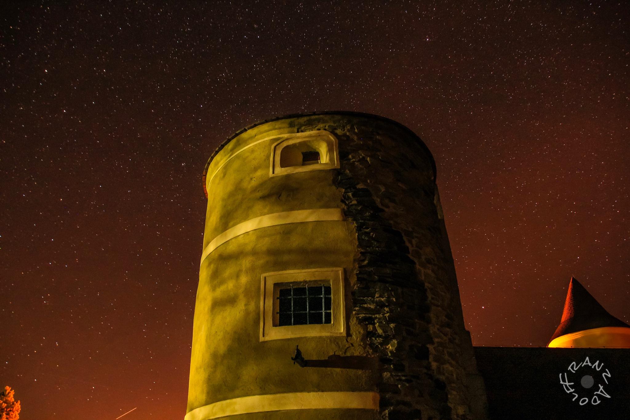Castle of Waldreichs  by Franzl