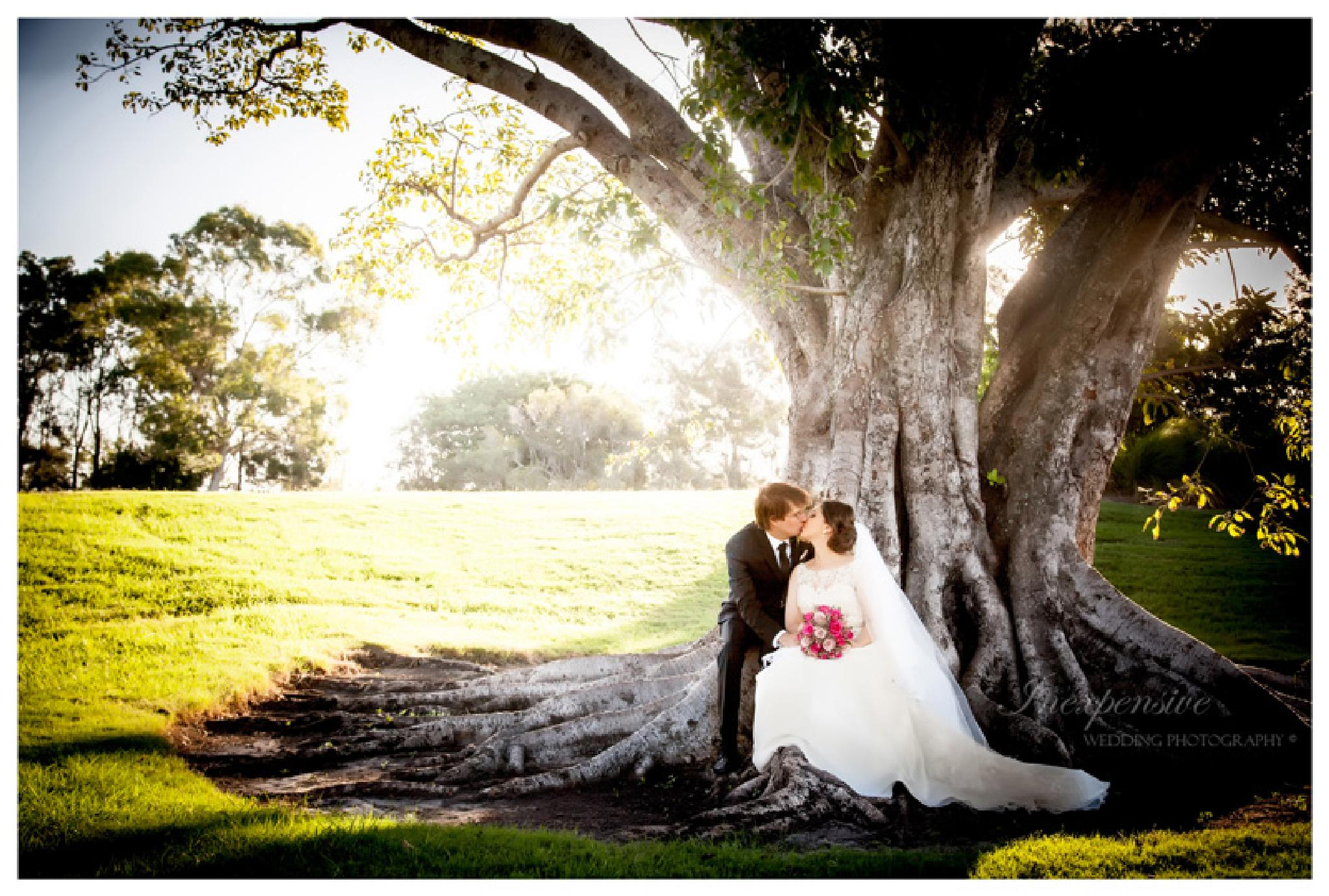 Inexpensive Wedding Photography by Inexpensive Wedding Photography