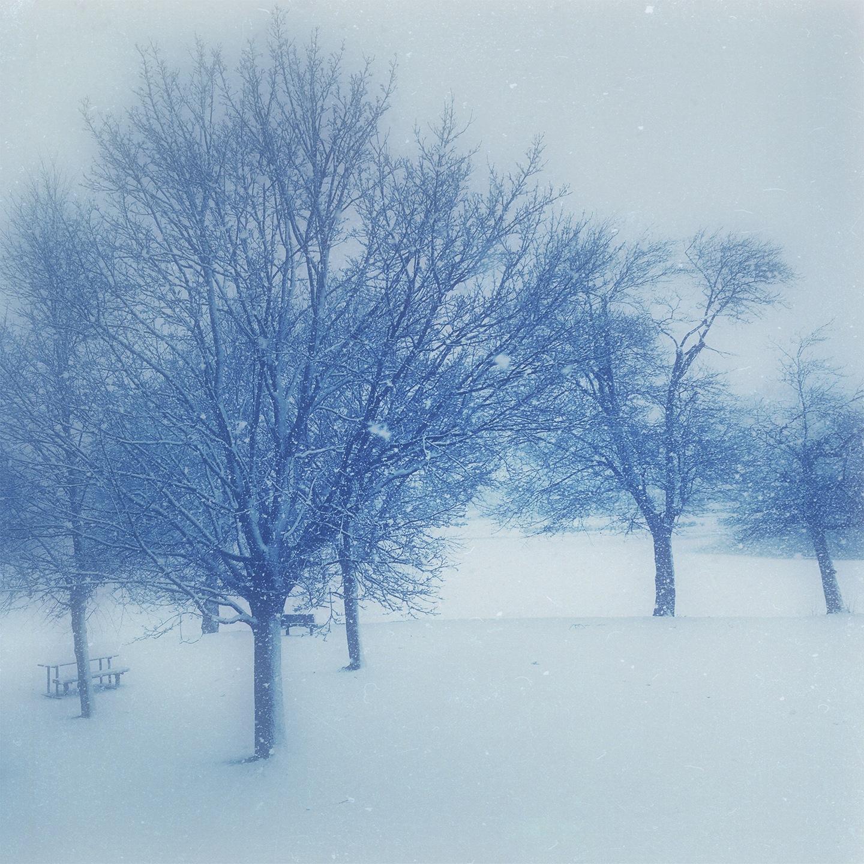 Blue snow by WDJ3