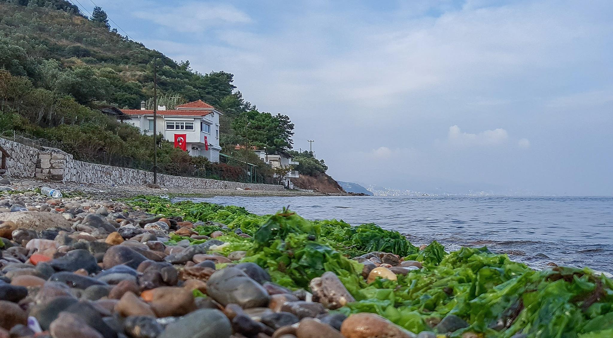 kursunlu shore by Fatih ÖZCANDAR