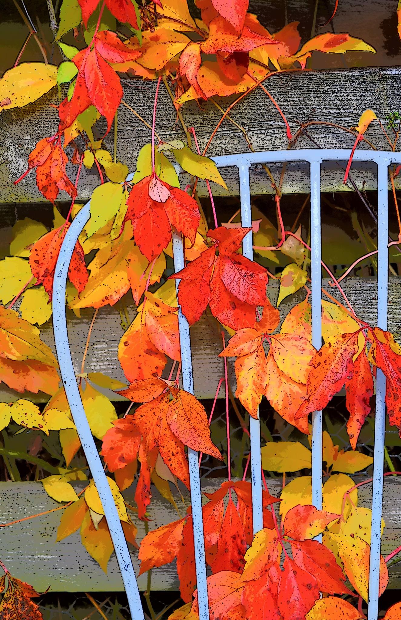 Autumn by Christine1802
