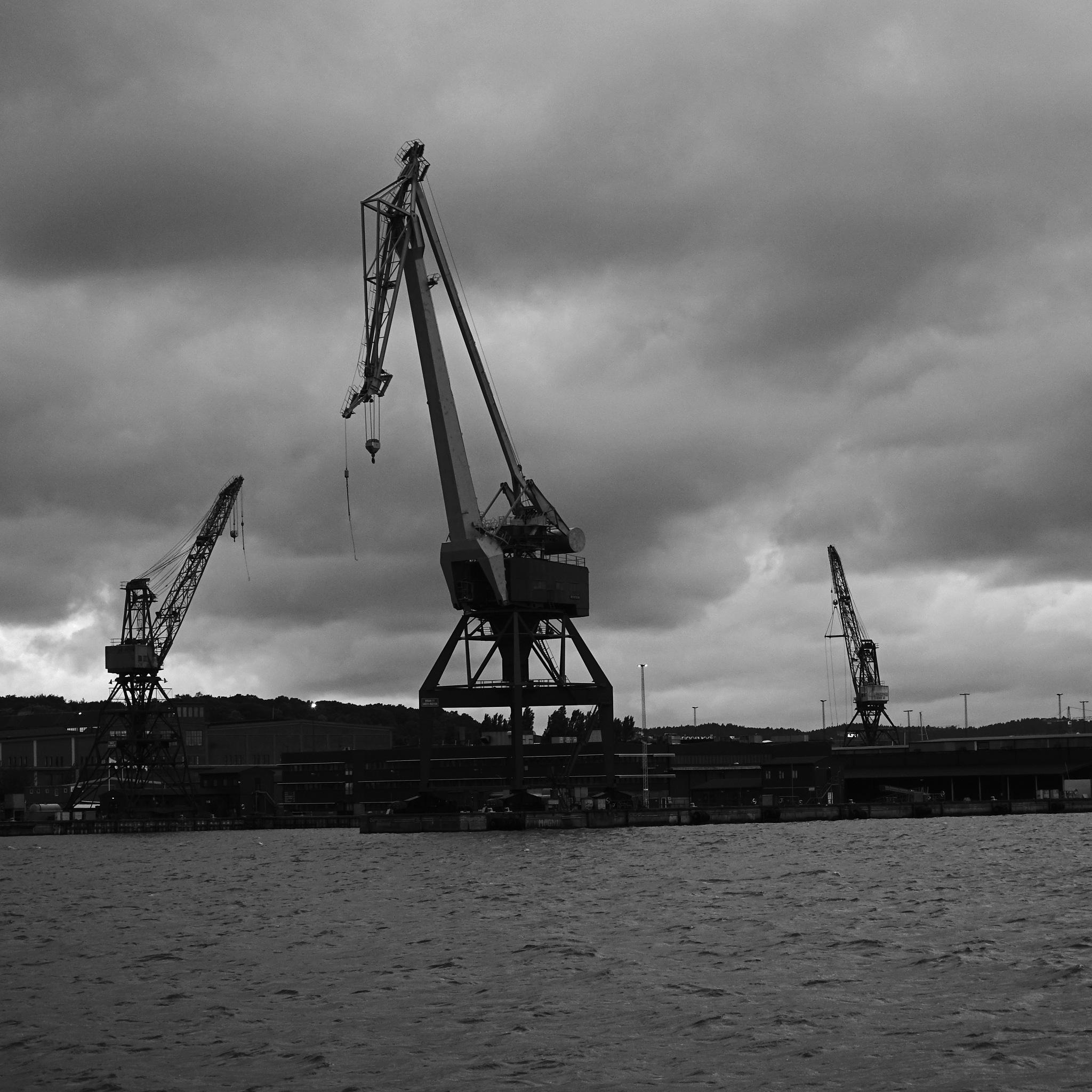 Cranes by Bo G Svensson