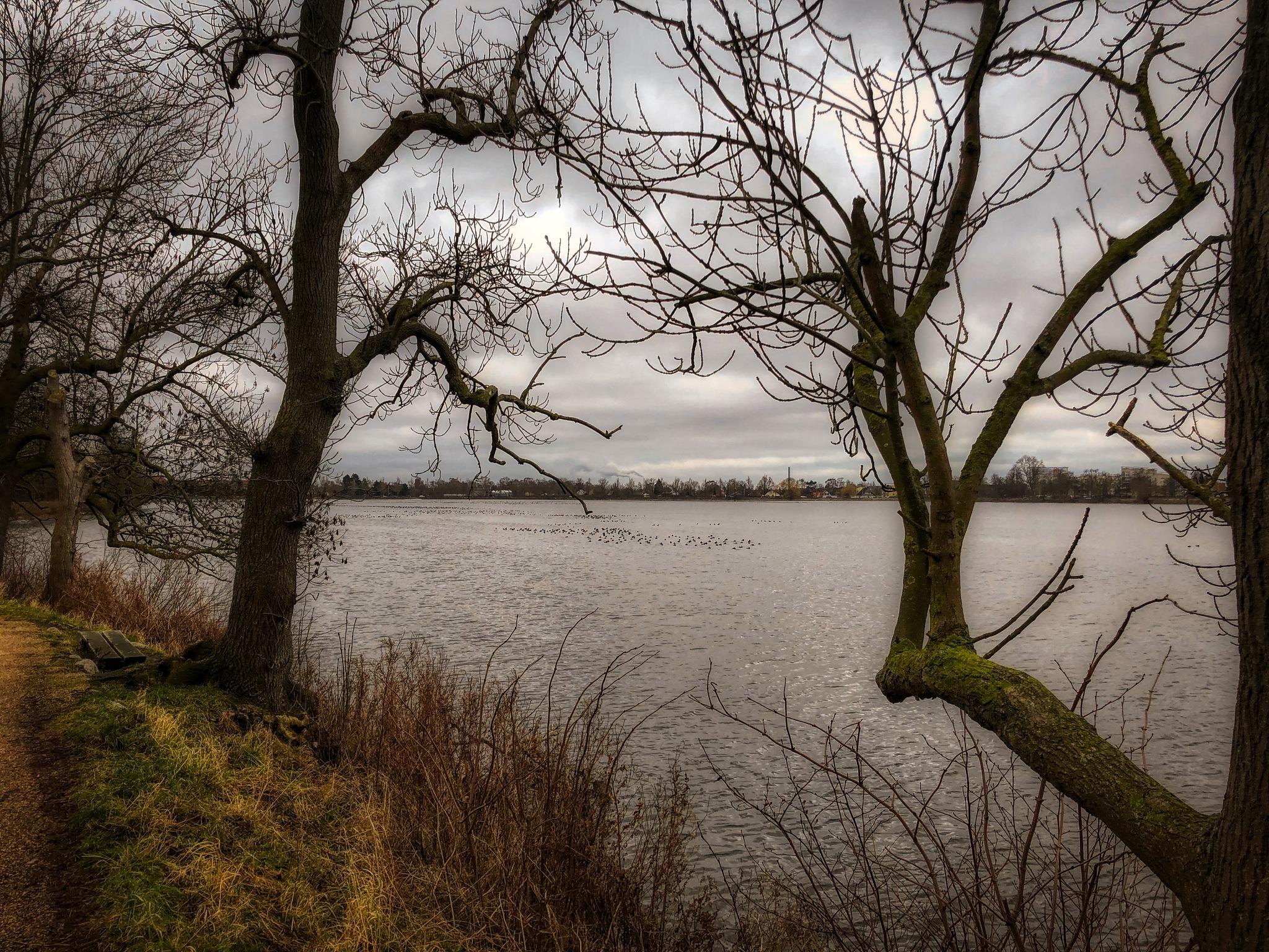 Lake by kulefe31