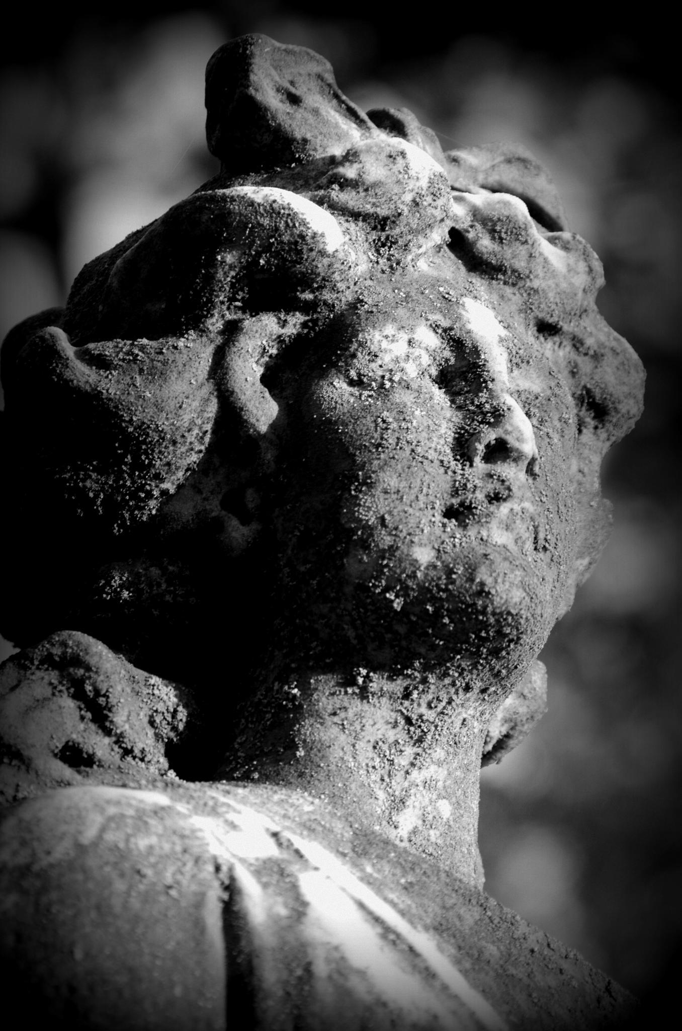 Lone watcher by Elizabeth