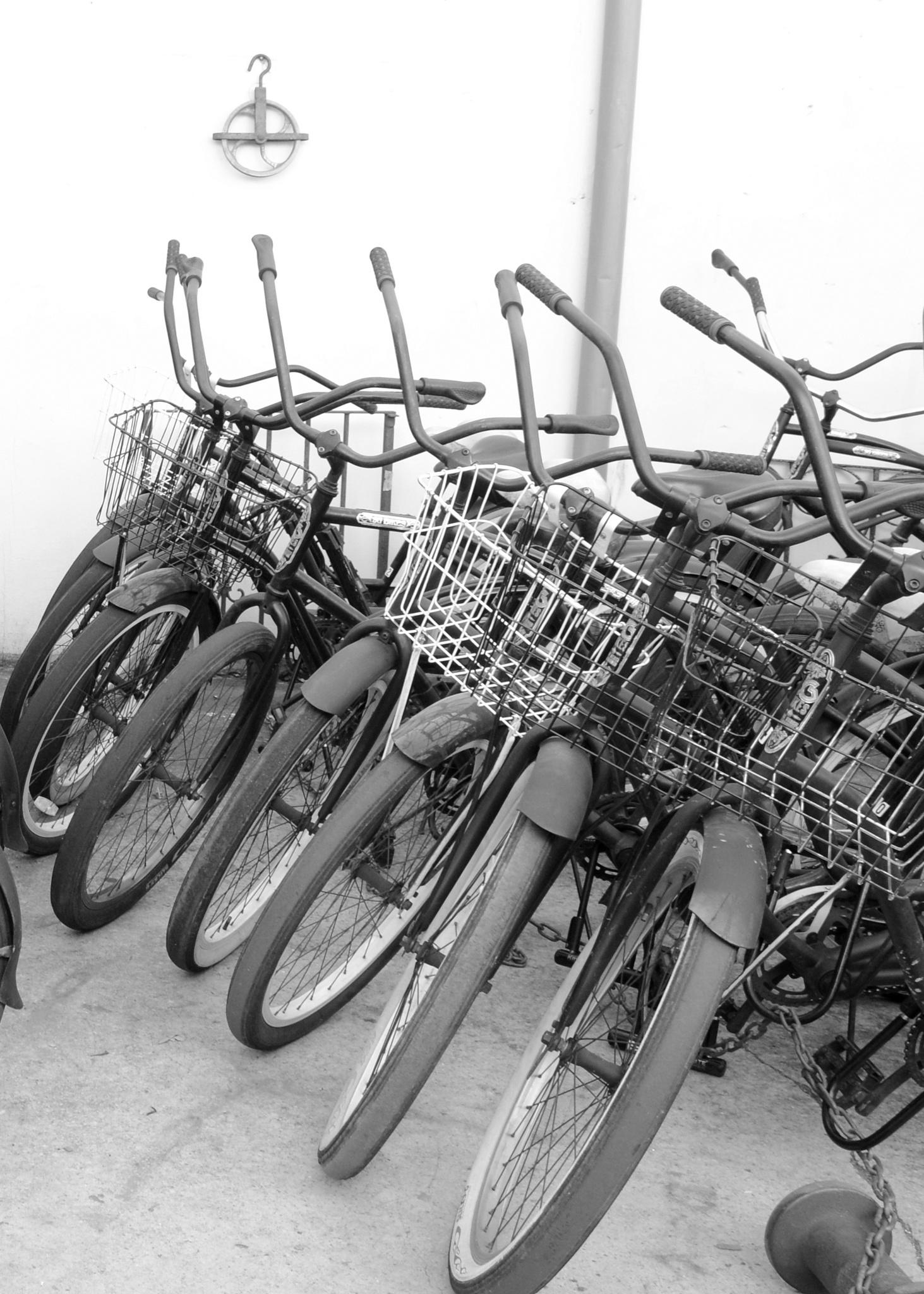 Bikes on antique row by Elizabeth