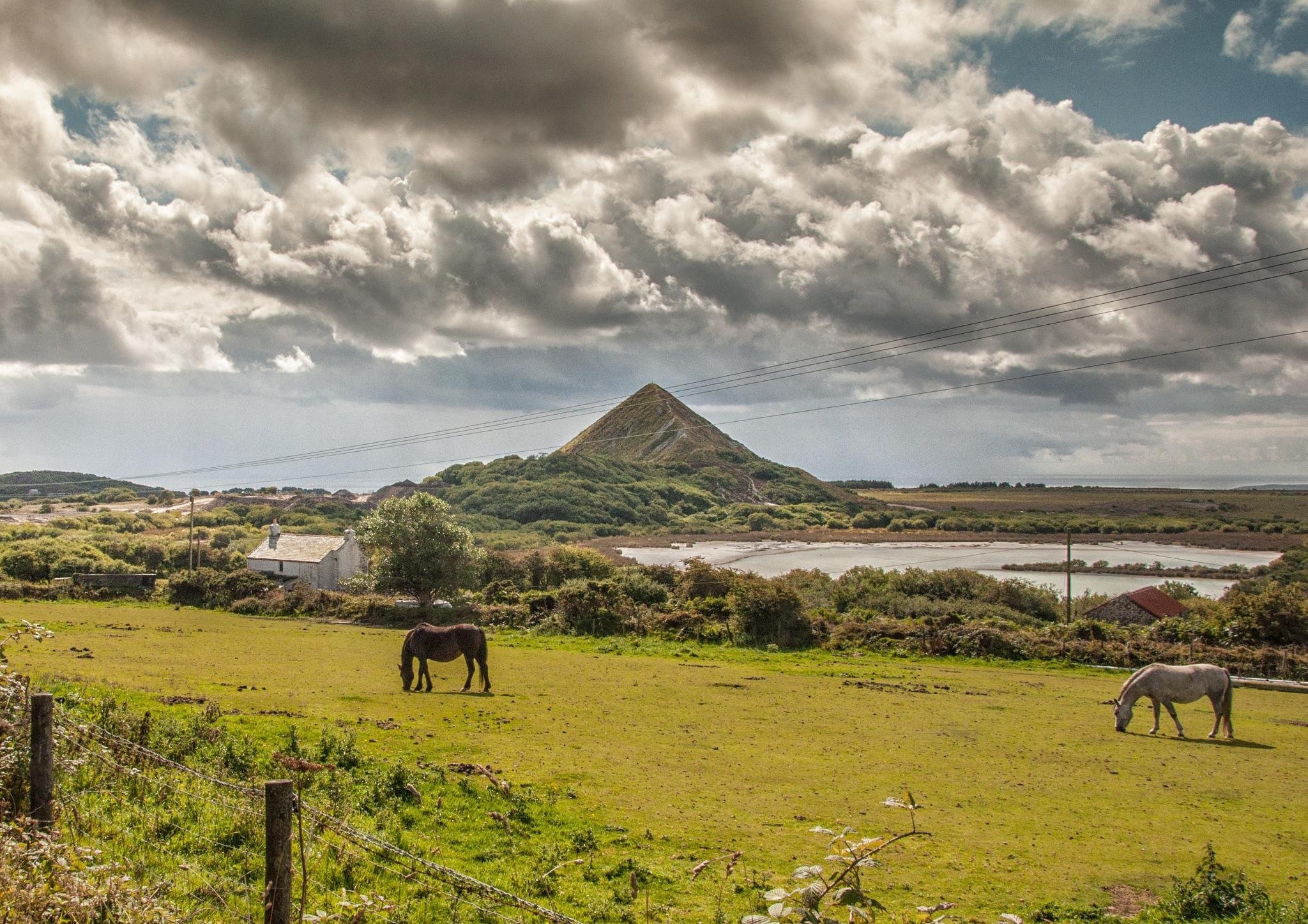 Cornish Landscape by Jim Obee