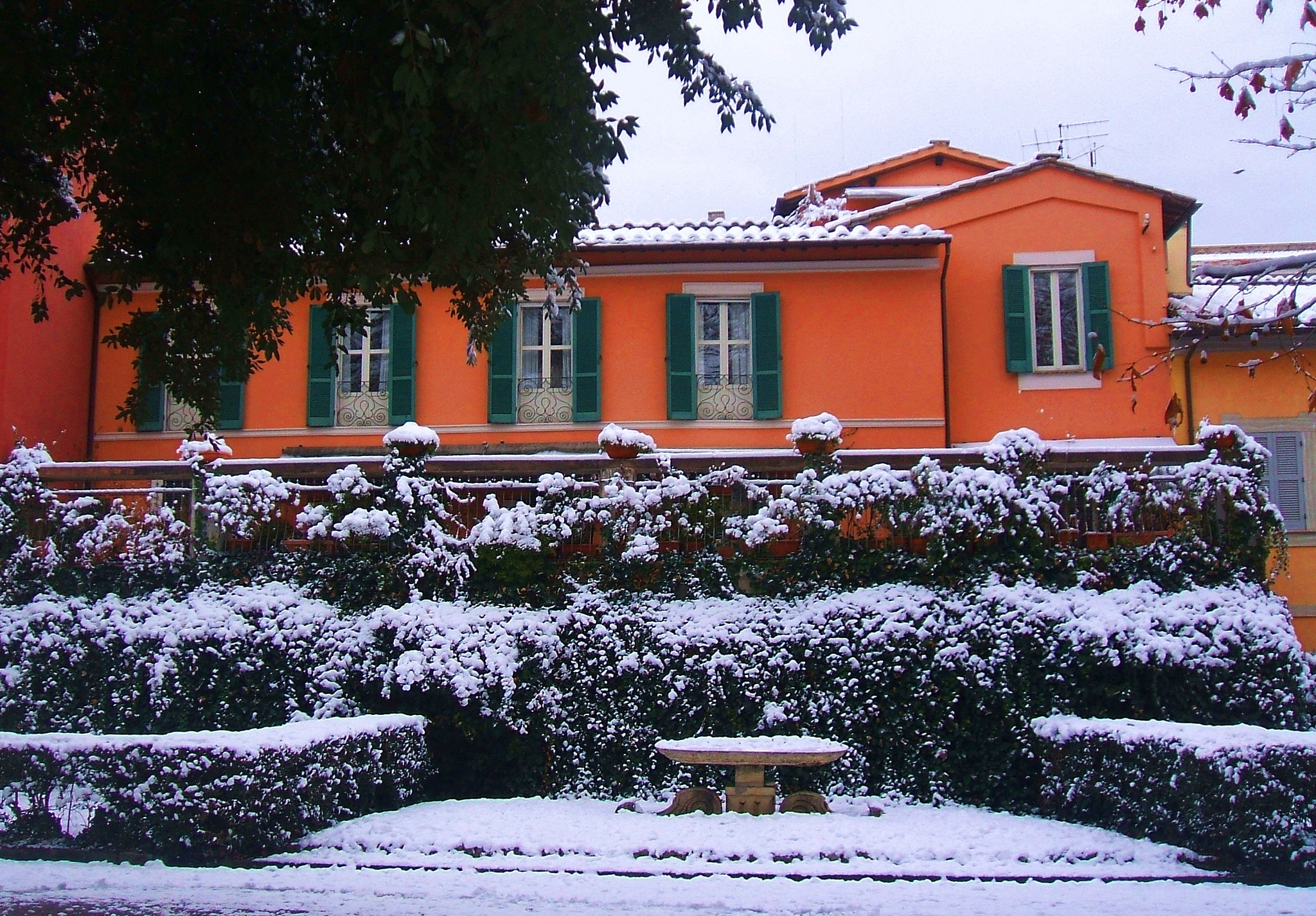 snow and orange by dalessionicola