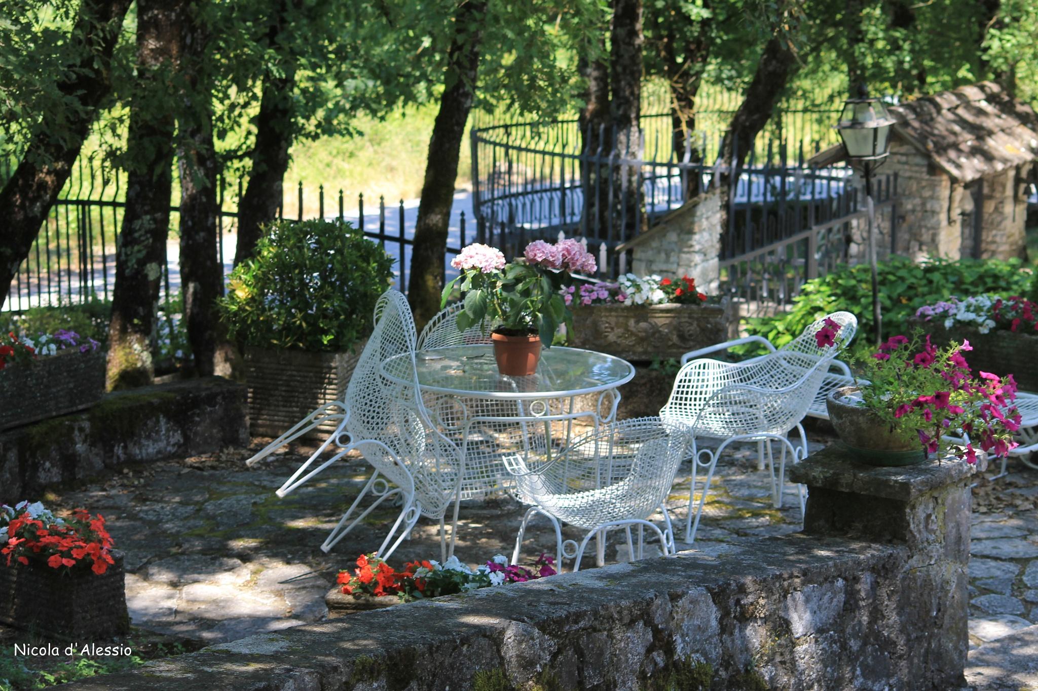 garden by dalessionicola