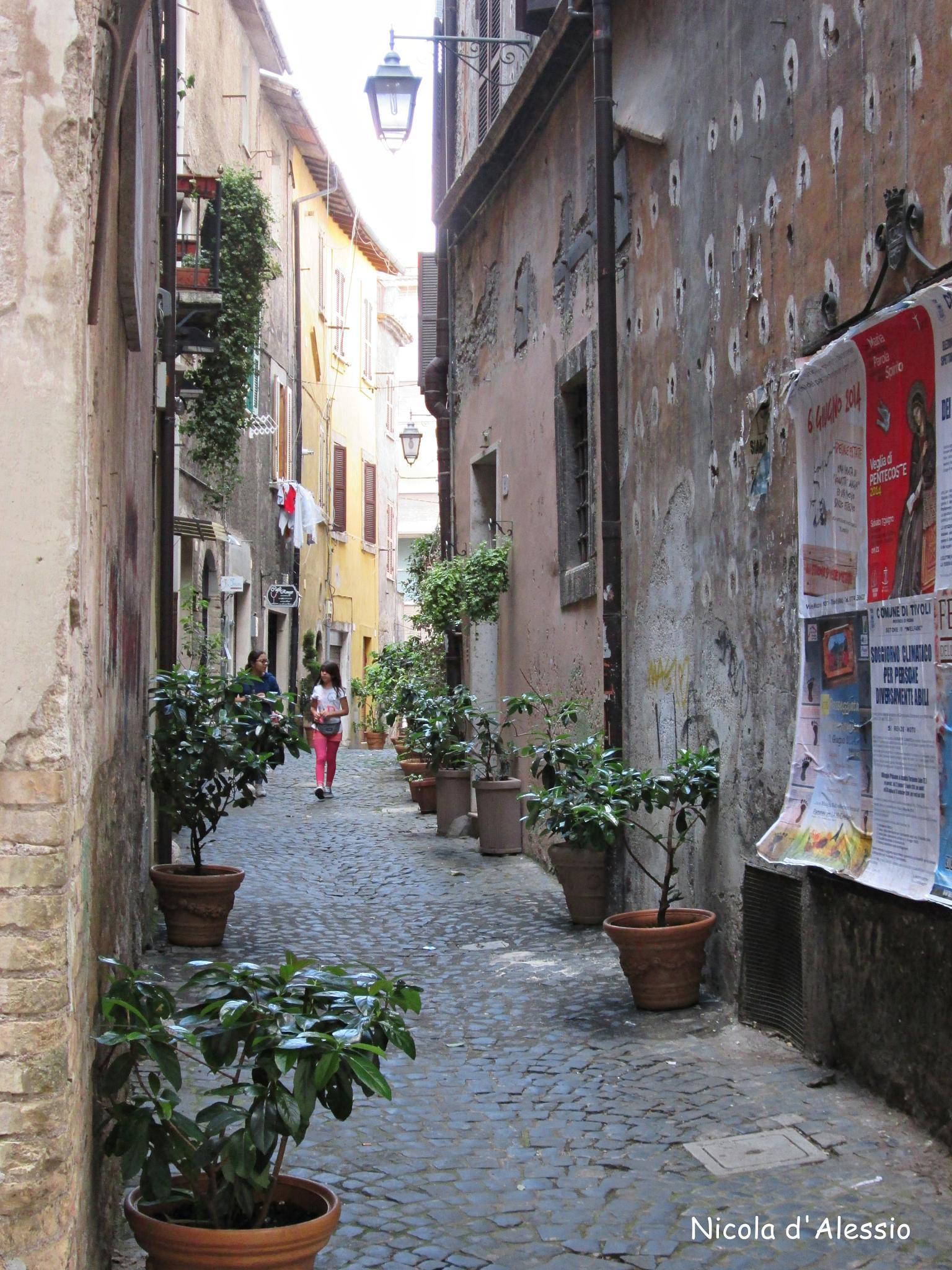 historic center of Tivoli (Rome) by dalessionicola