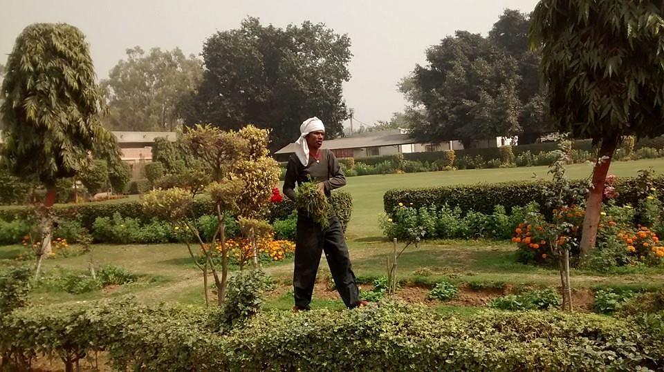 Gardener# hard work  for happiness + hope  by Rachna