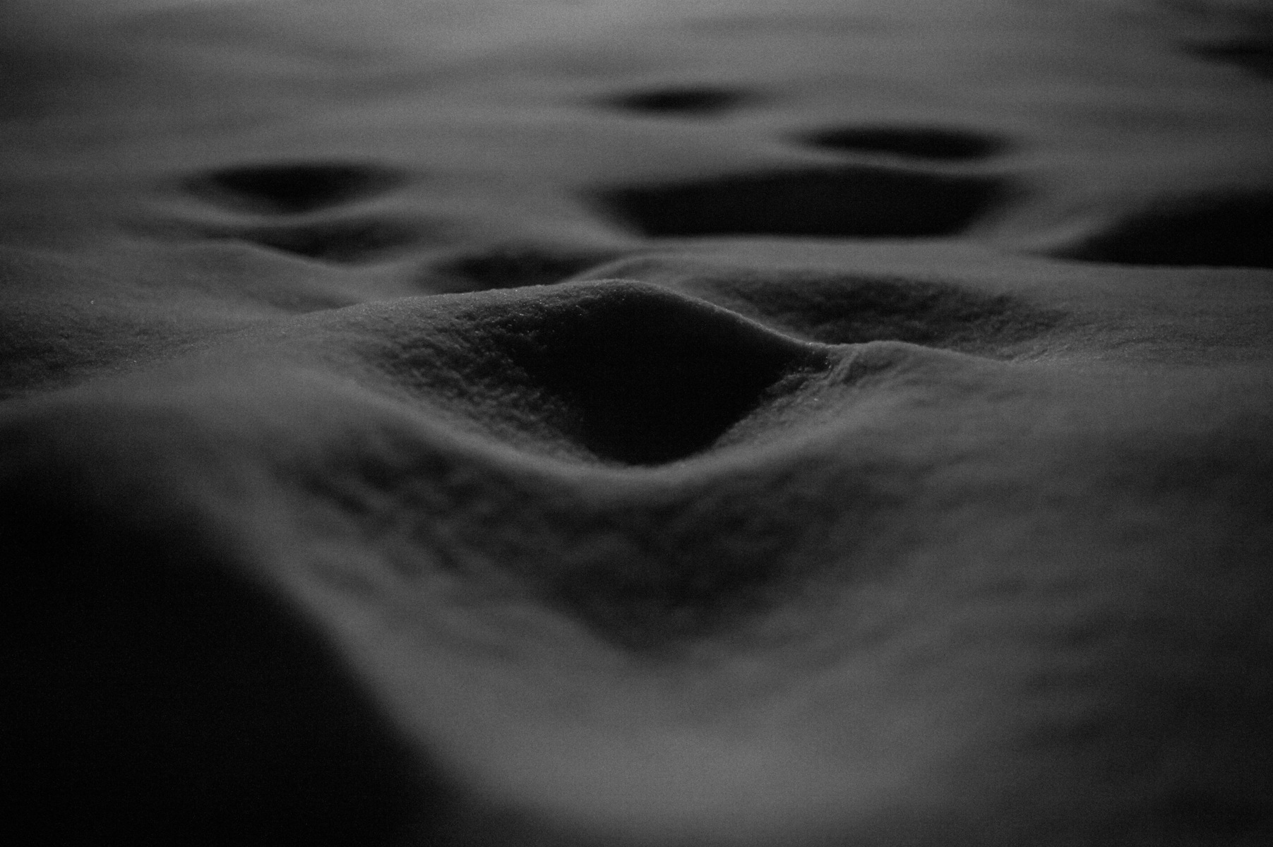 Photo in Black and White #tende #france #snow #winter #night #moon #sand #monochrome #dune #ground #macro #detail #nature #weather