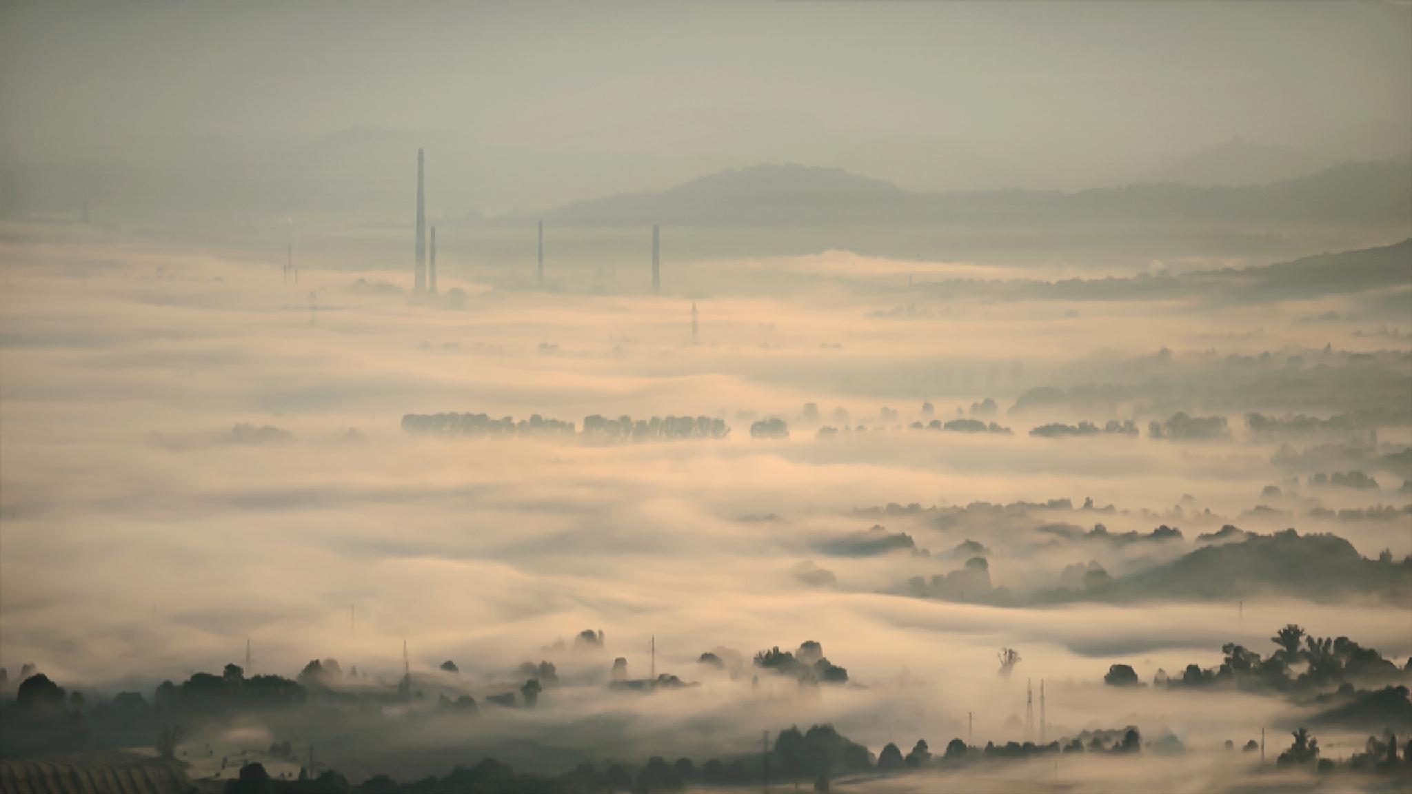 Mgła by Zbigniew Gałucki