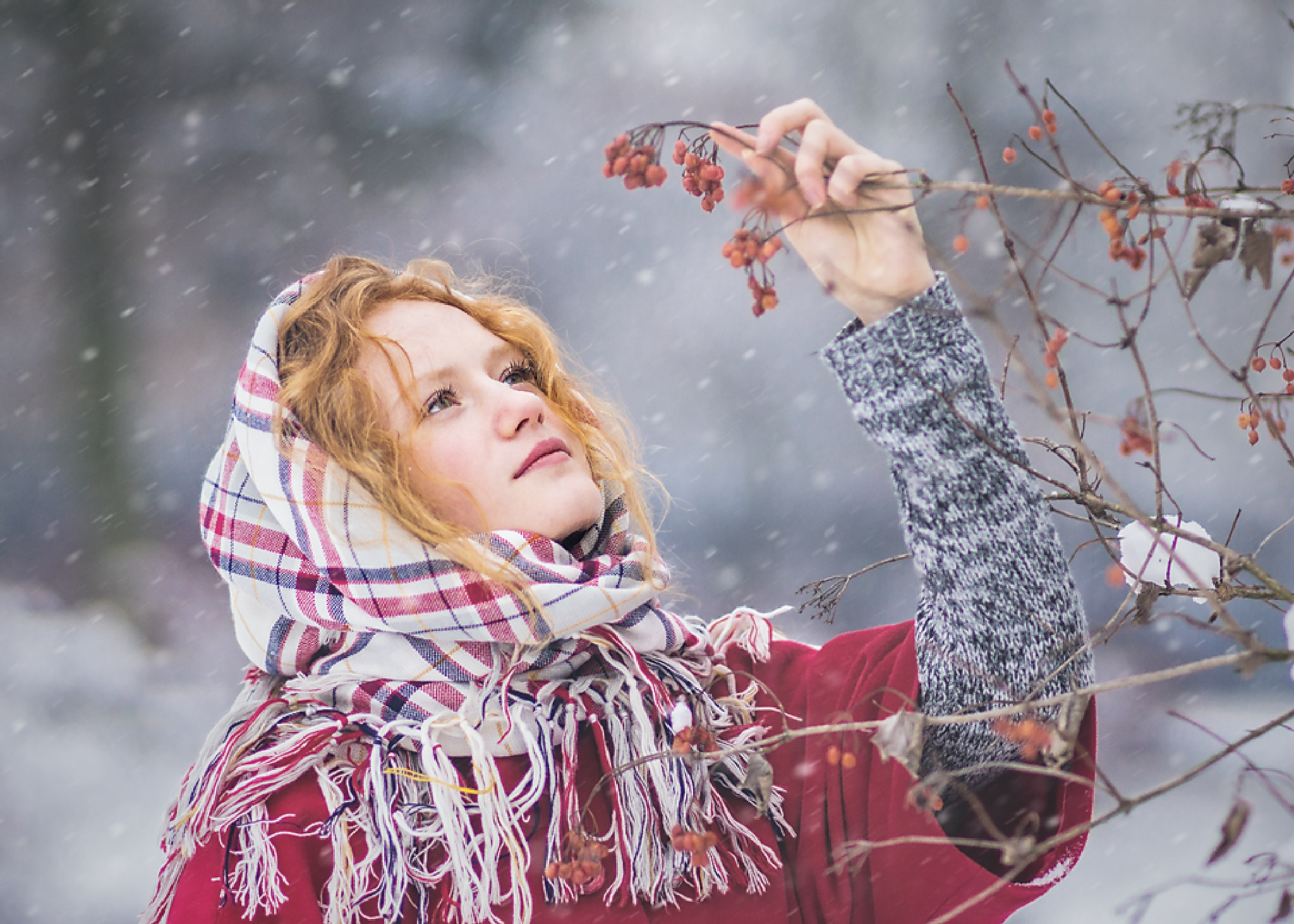 red winter by magdalenawolk