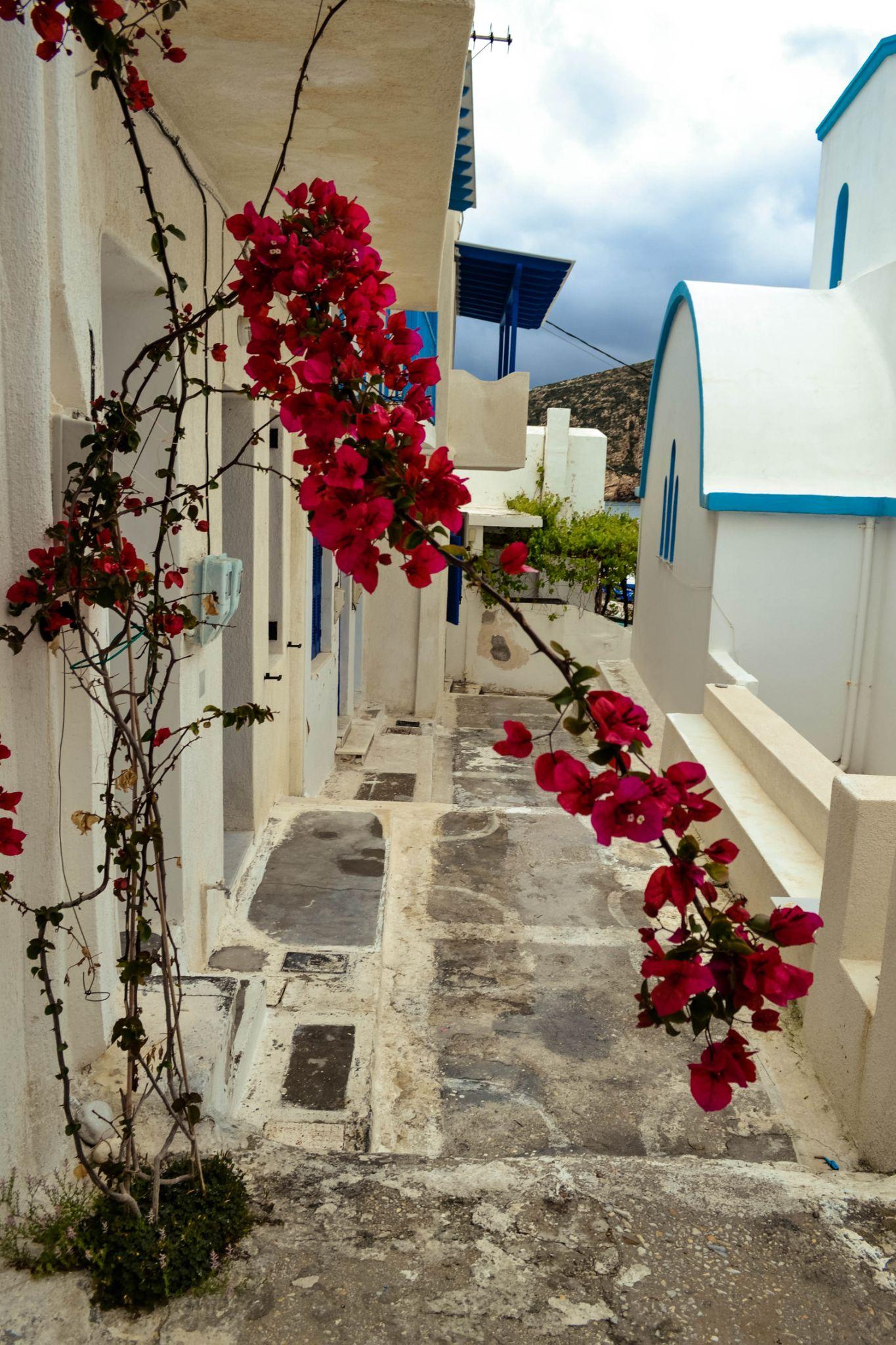 Naxos, Greece by lambriana