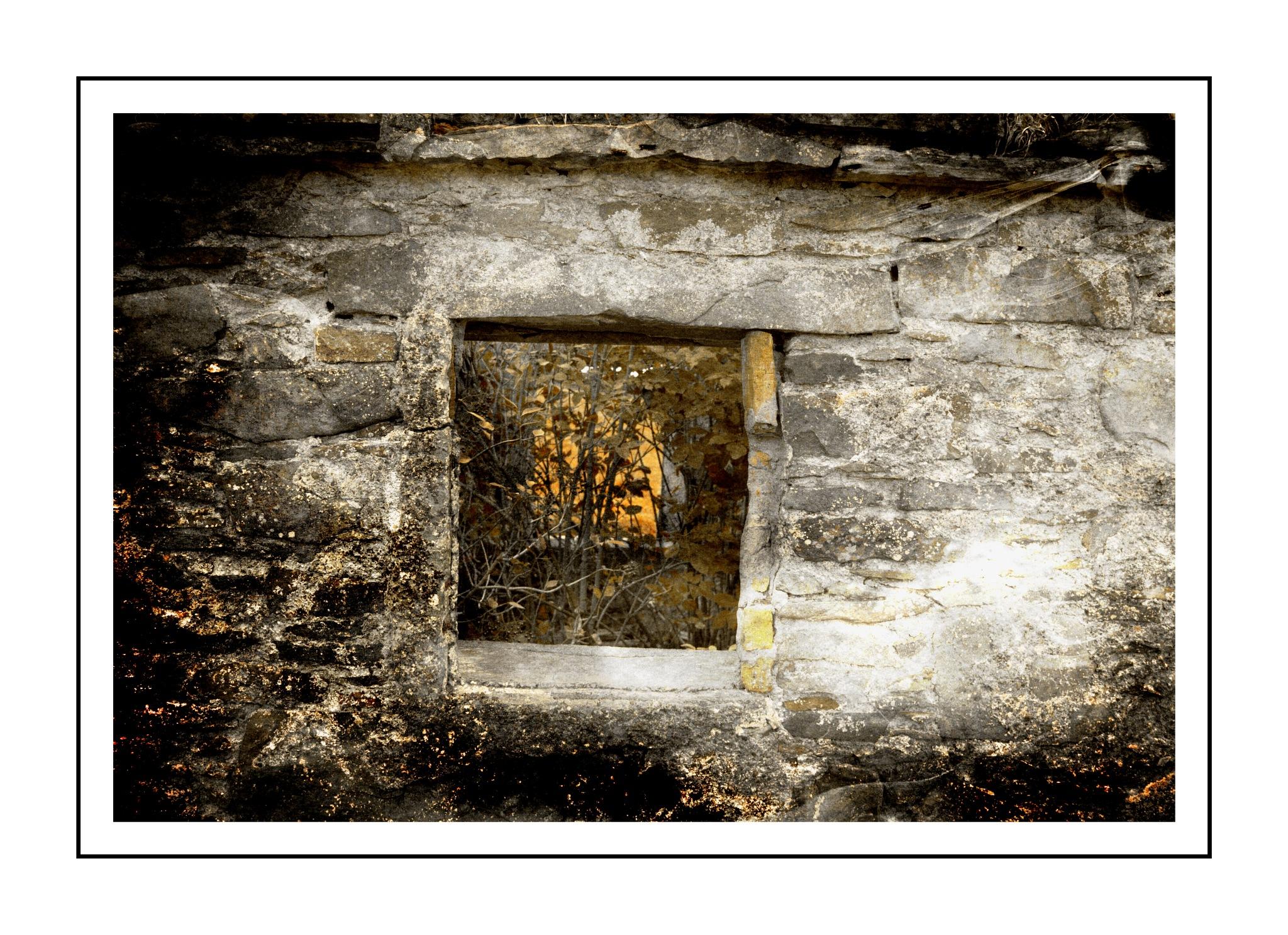 through the window by Jason Clarke