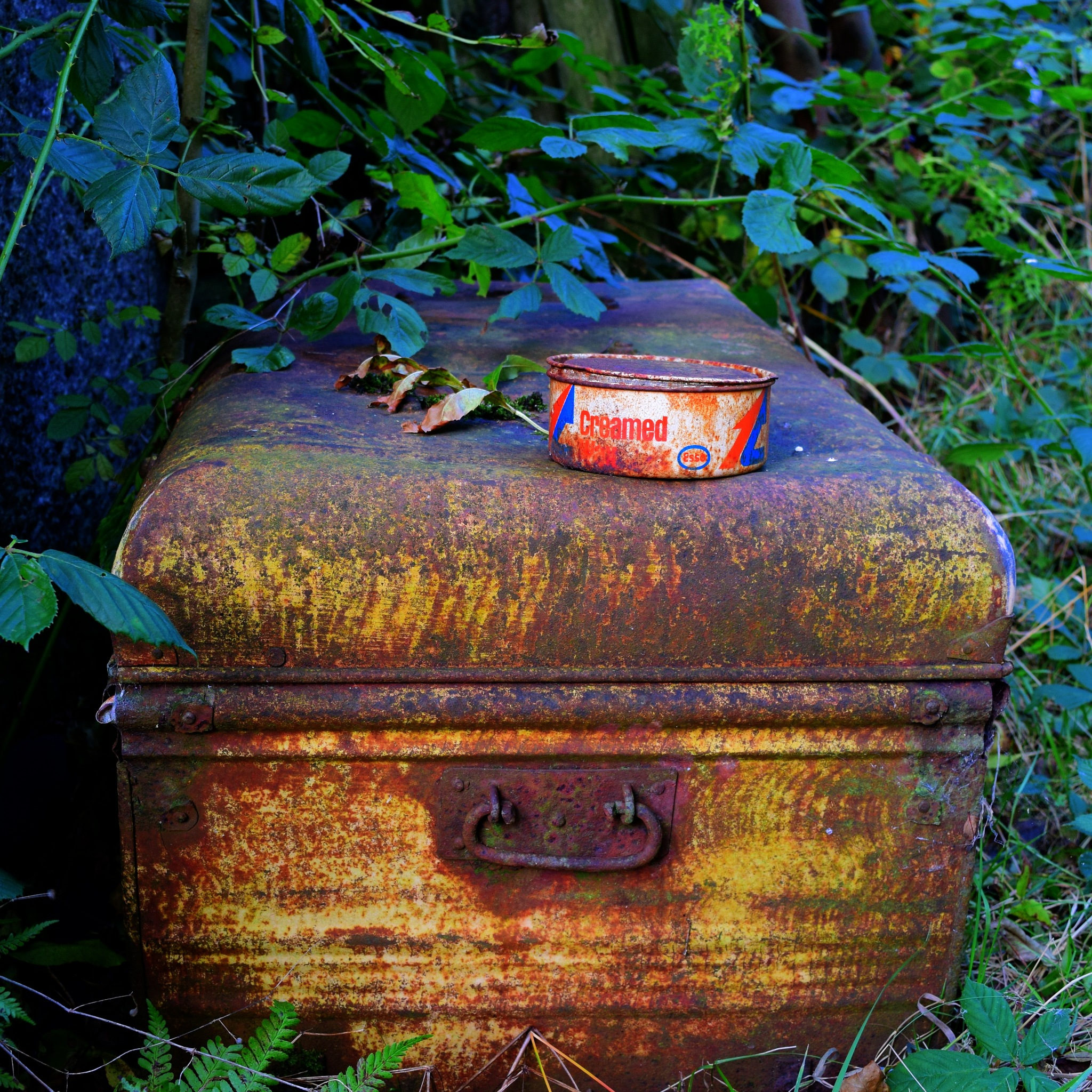 whats in the box by Jason Clarke