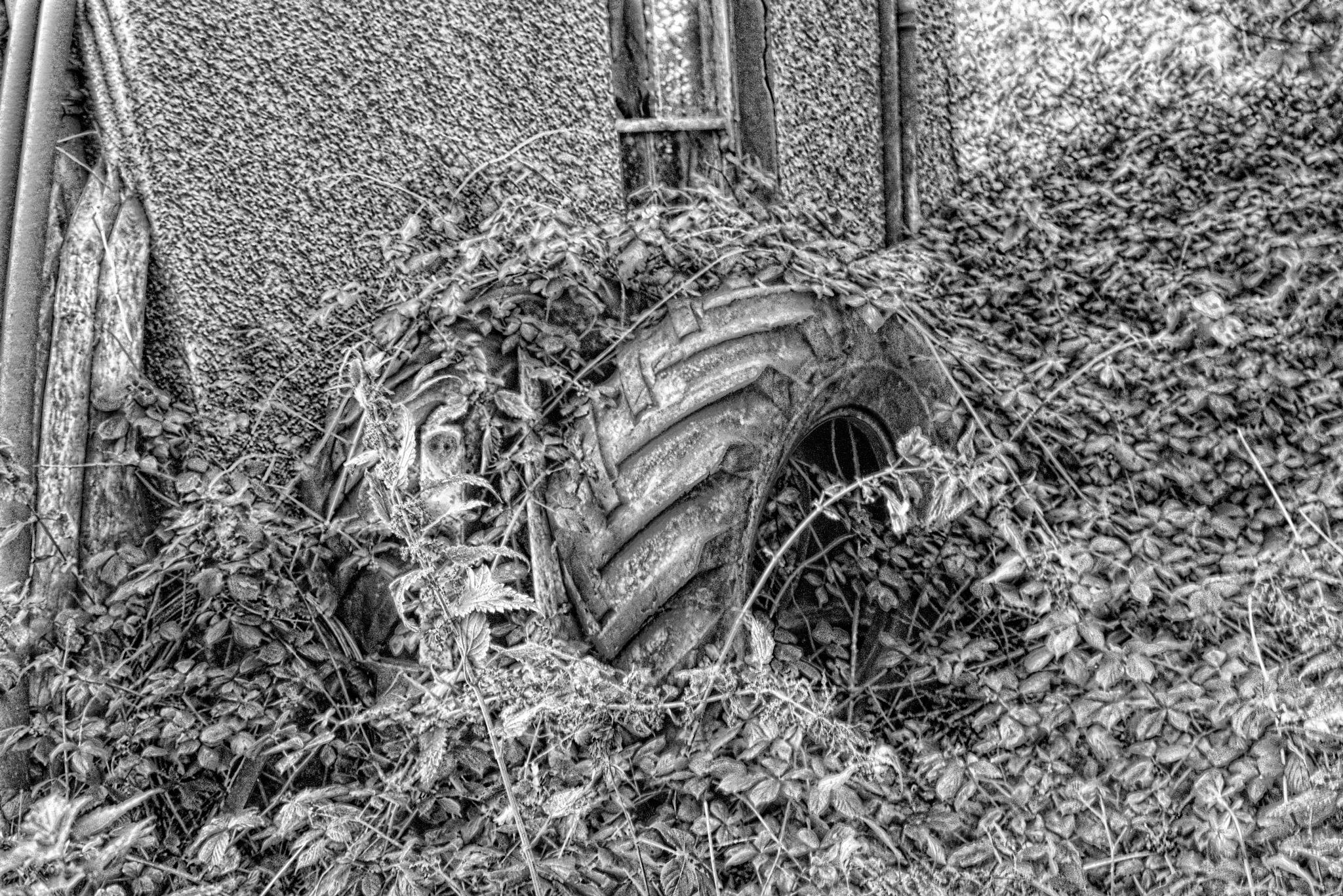 old tyre by Jason Clarke