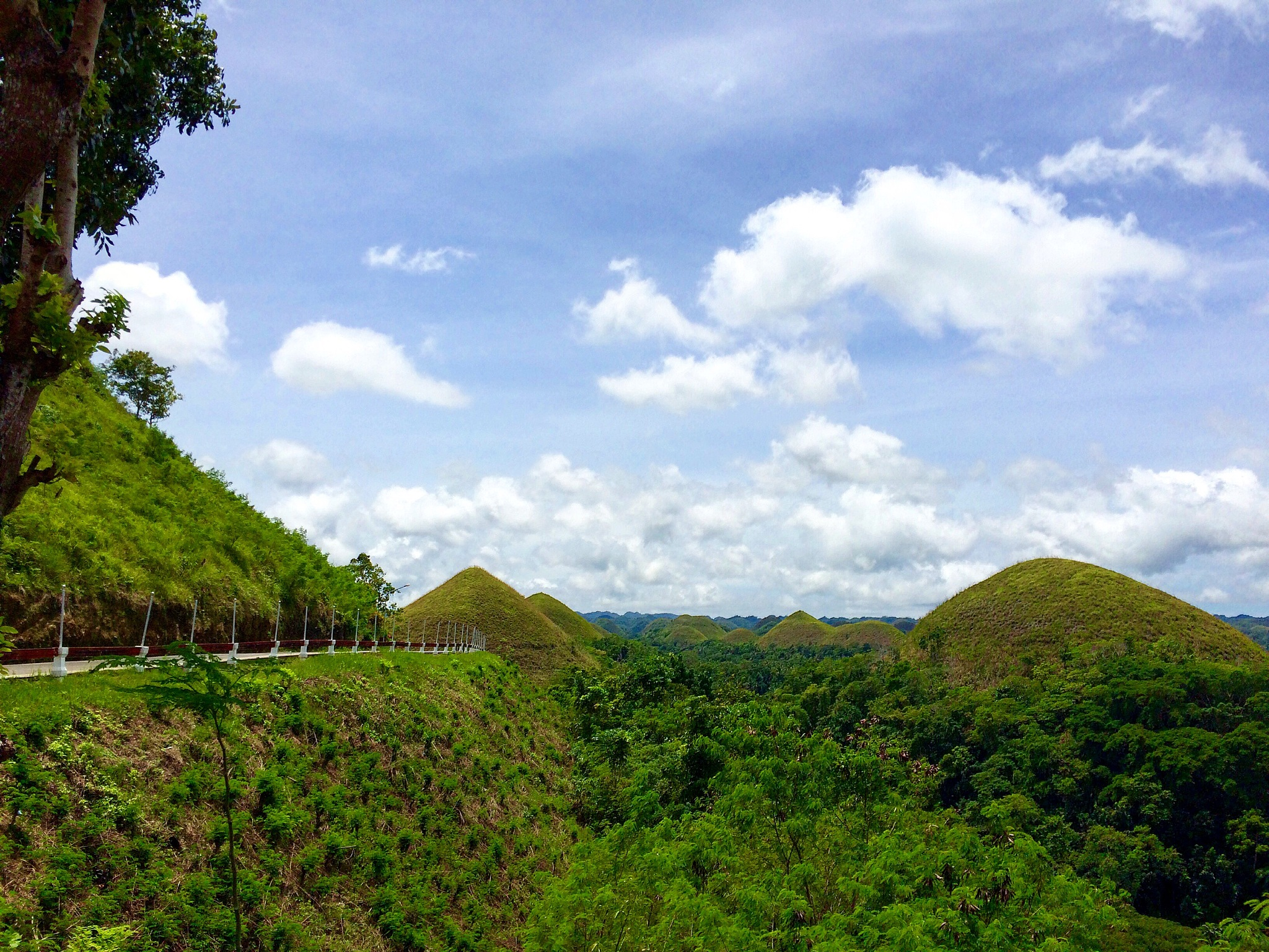 Chocolate Hills by Nikki Lagutin