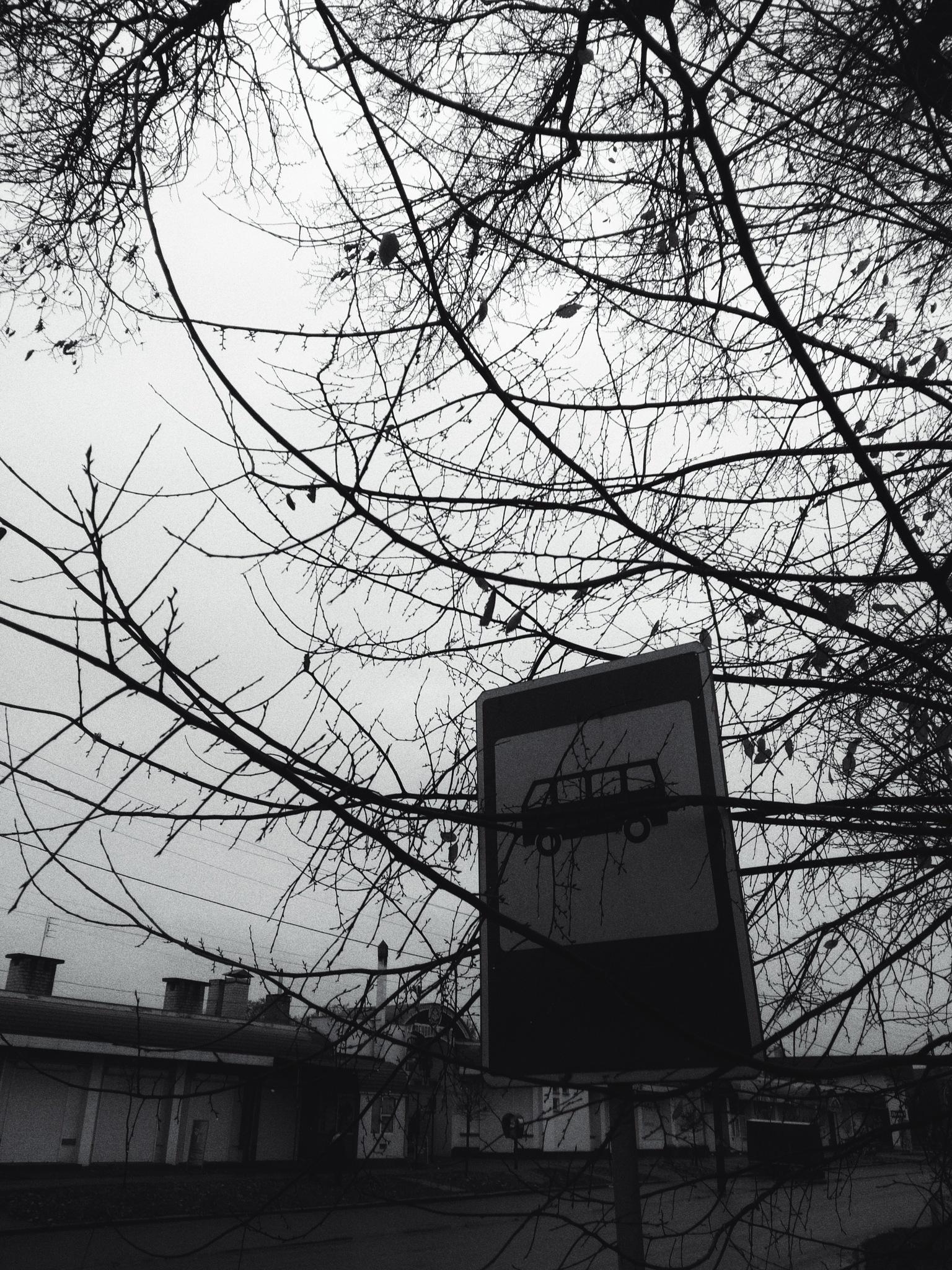Raining by AP