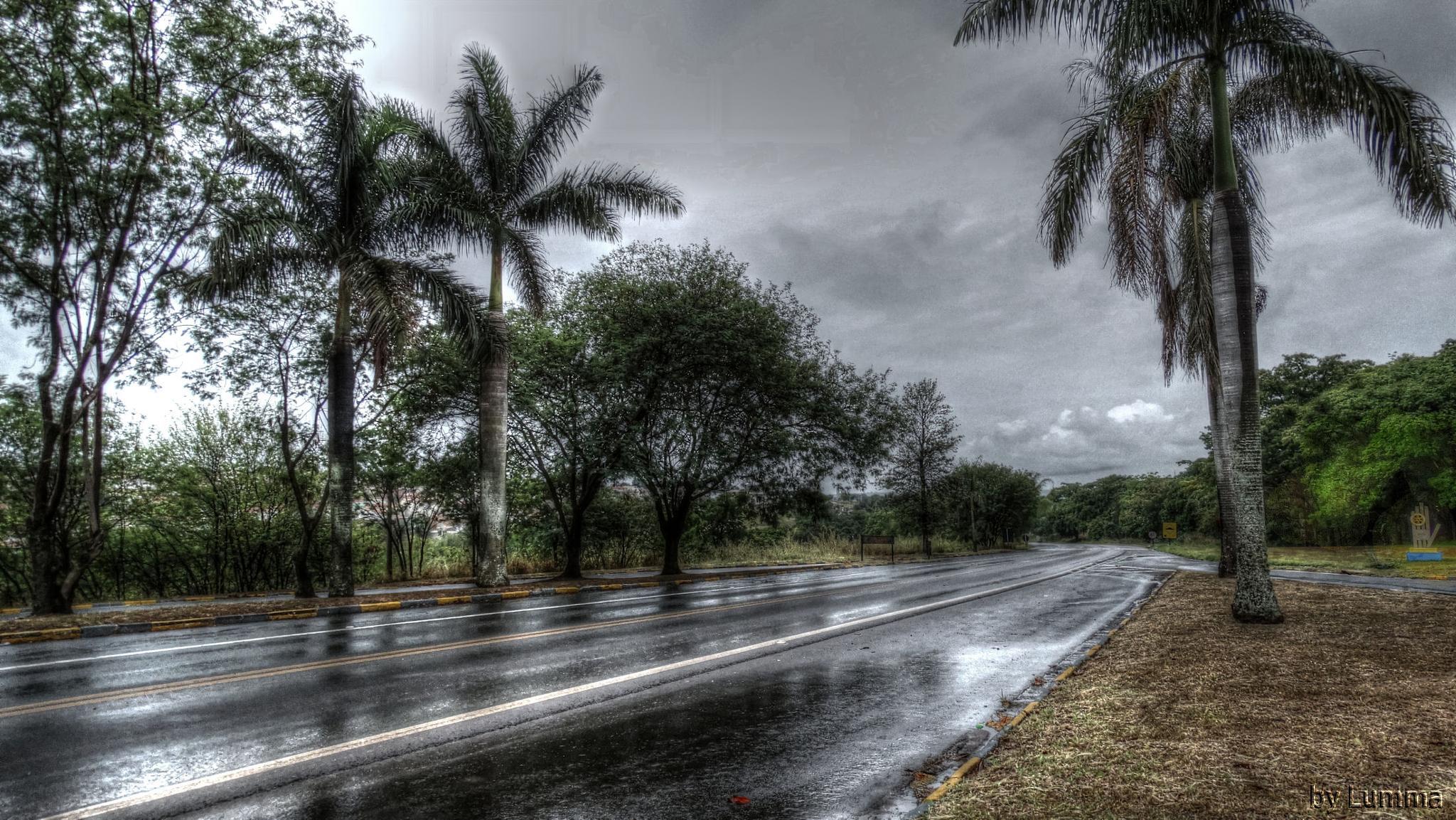 Photo in Travel #chuva #estrada #água #natureza #hdri