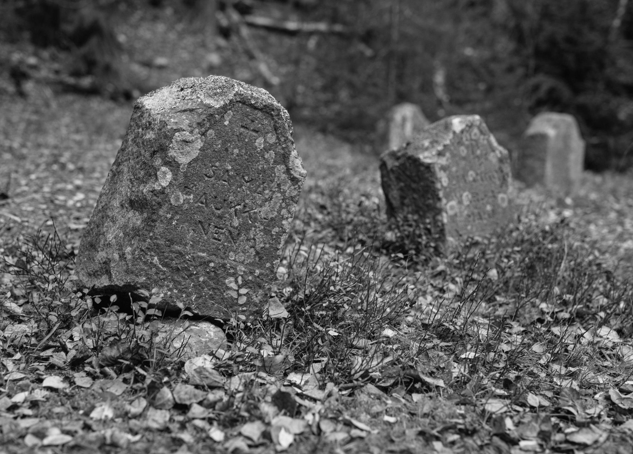Abandon Cemetery by Veli-Matti Launio