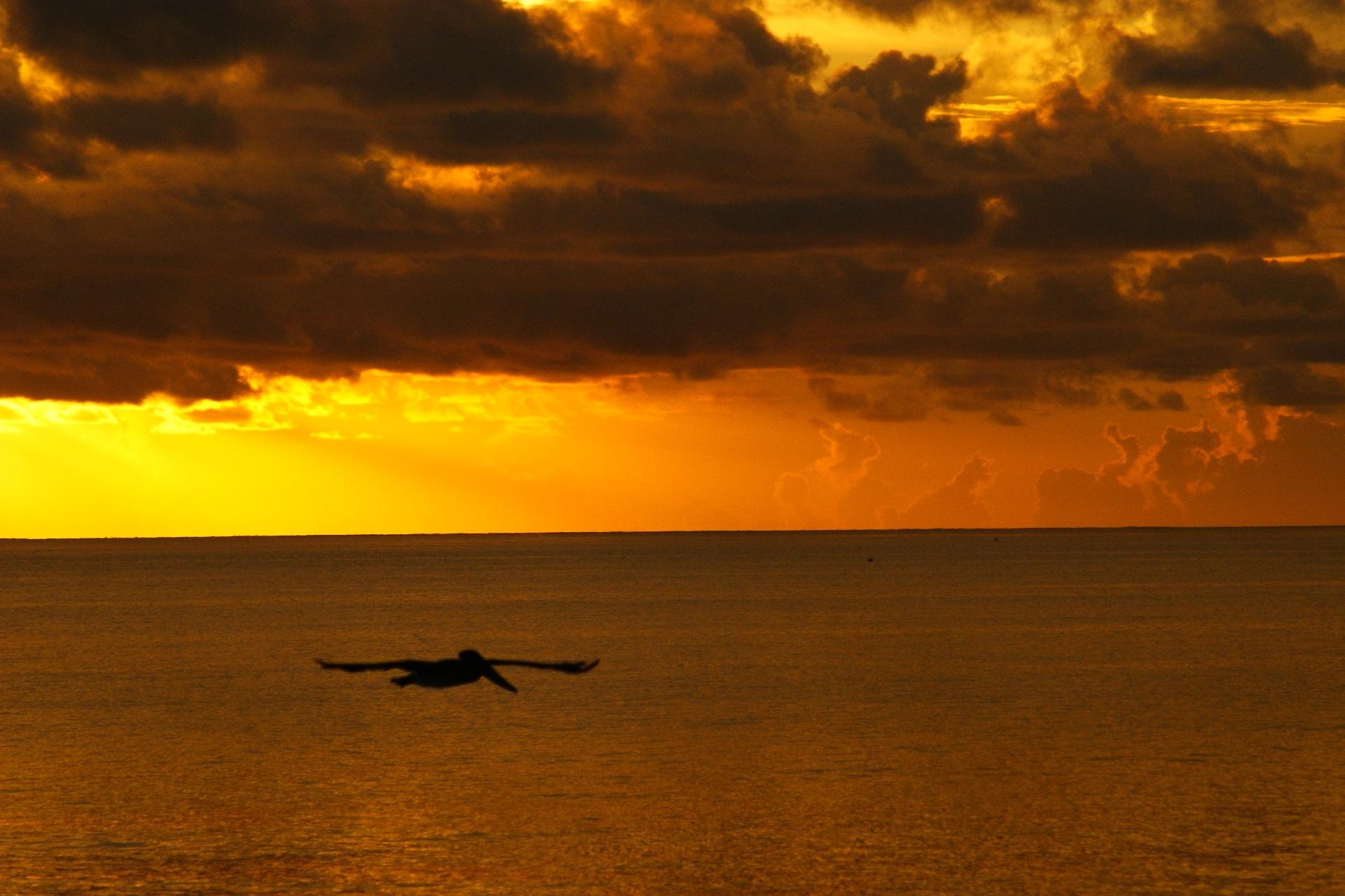 El Sol de Miami. sunrise/sunset.  #elsoldemiami #miamibeach  by delgado.babby