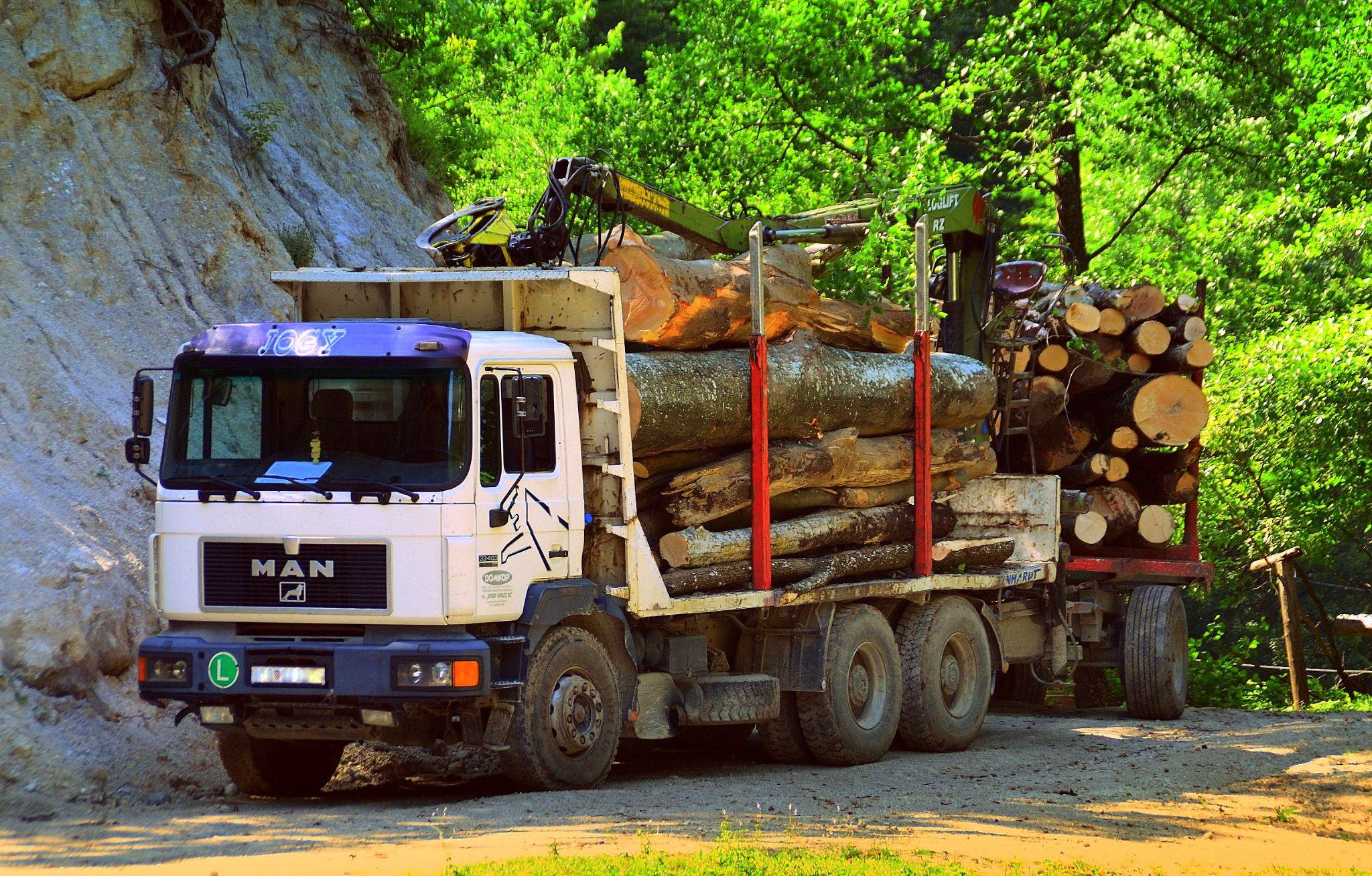 Timber truck by Tihomir Z Beller