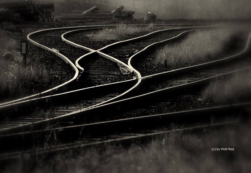 forgotten tracks by WolfRed