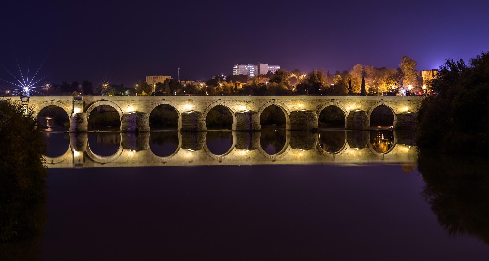 Bridge in Spain by Simo Tynys