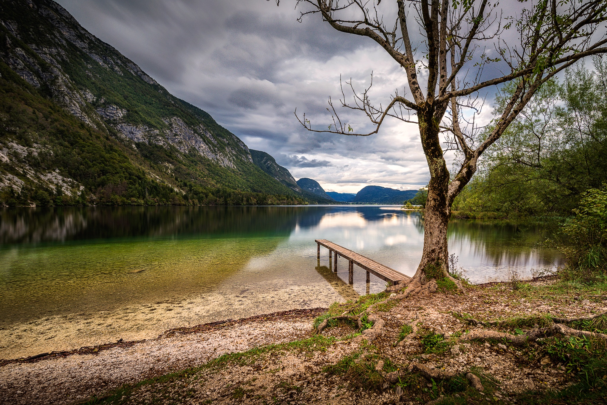 Pier and a tree by Simo Tynys