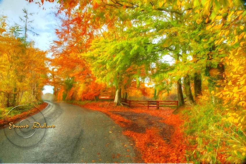 A country road in Autumn. by EdwardDullard