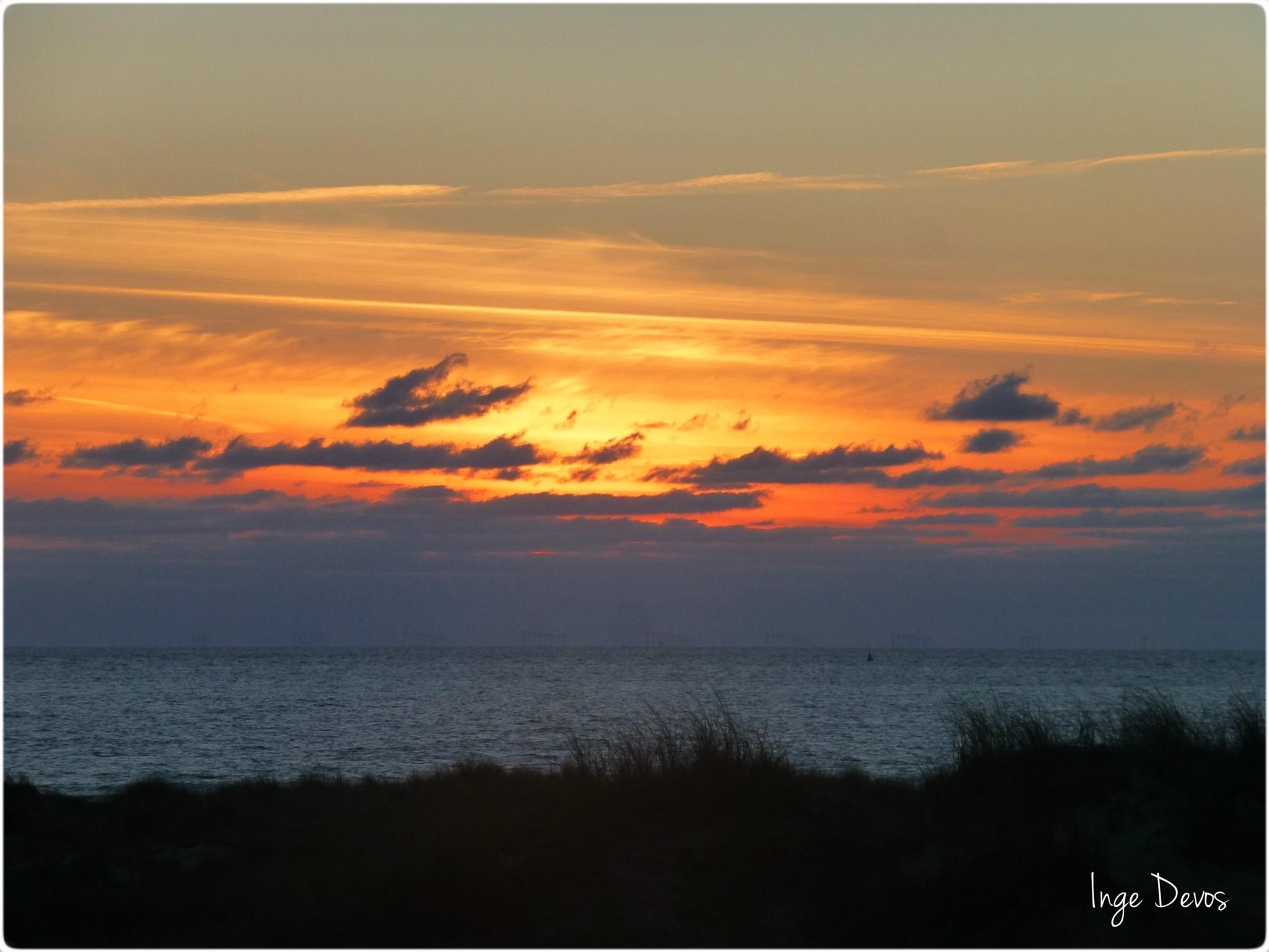 Sunset - Wijk aan Zee (Netherlands - Coast)  by Inge Devos