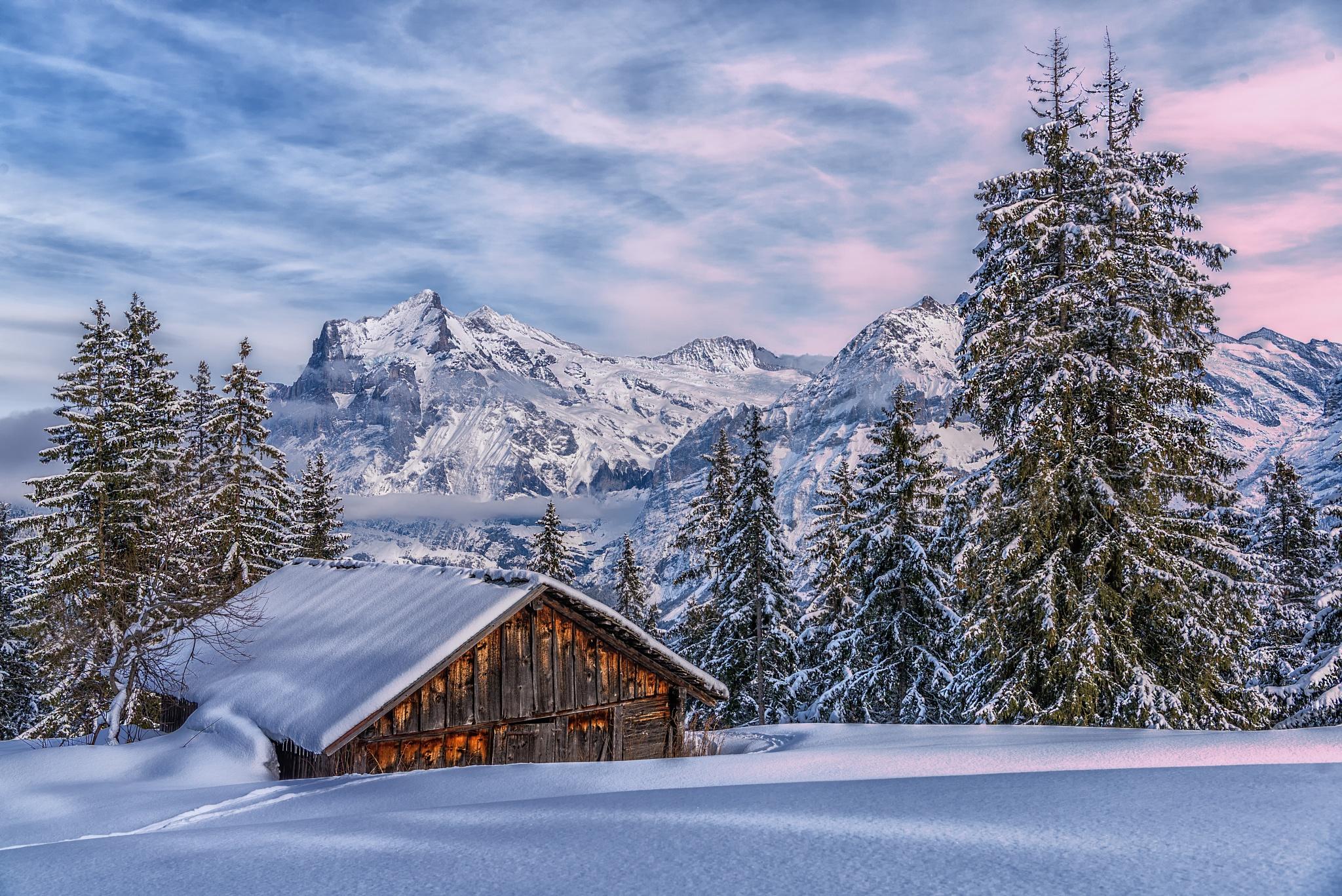 Winterschlaf by Martin Schnetzler