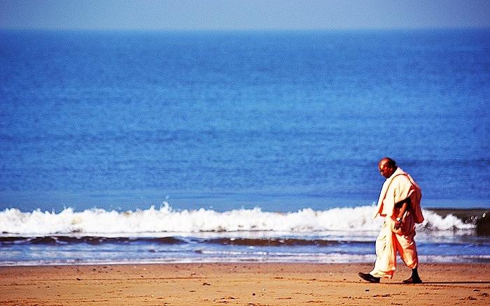 The Walk of Zen by Srivinay Salian