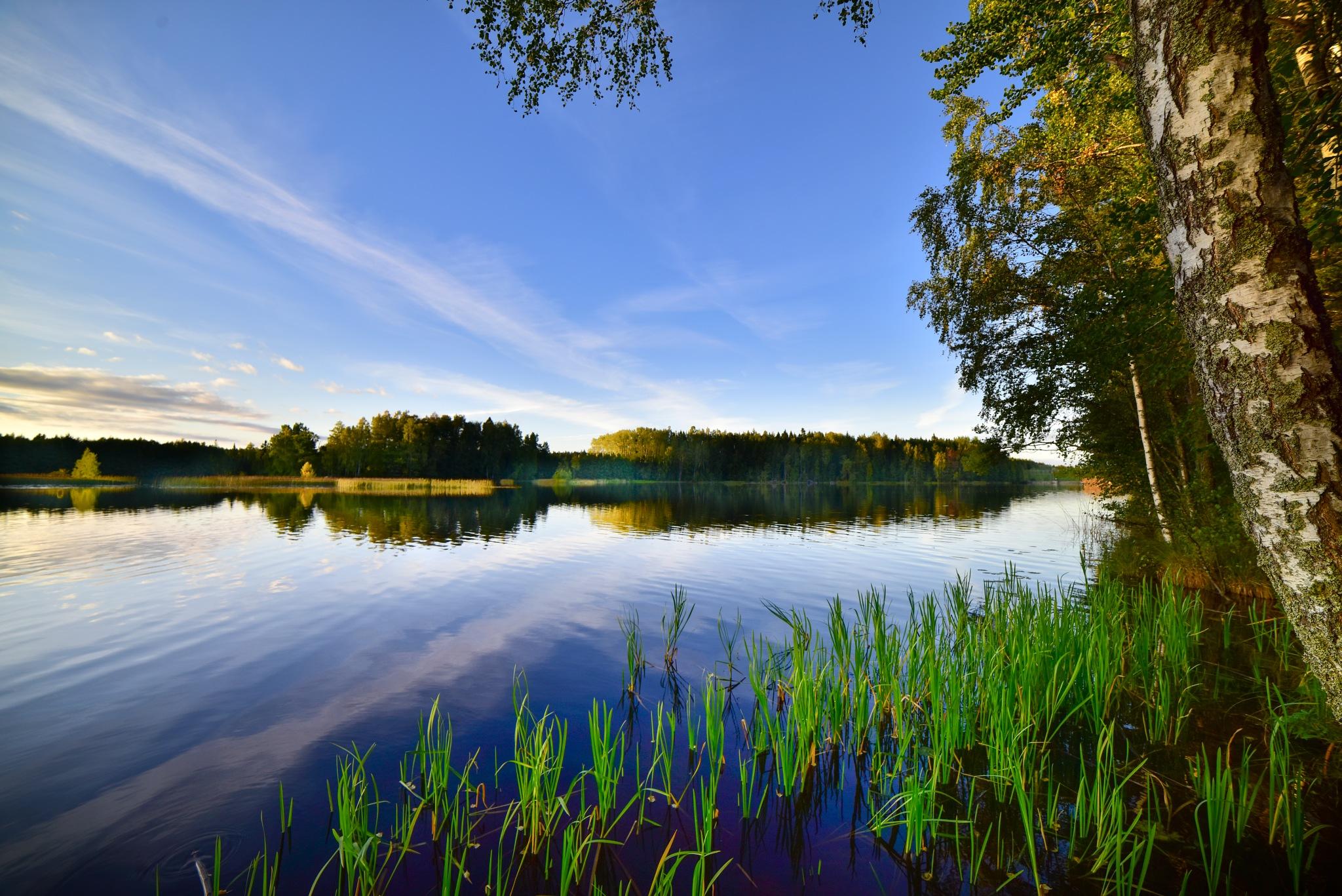 karleby stream by Niclaskrog